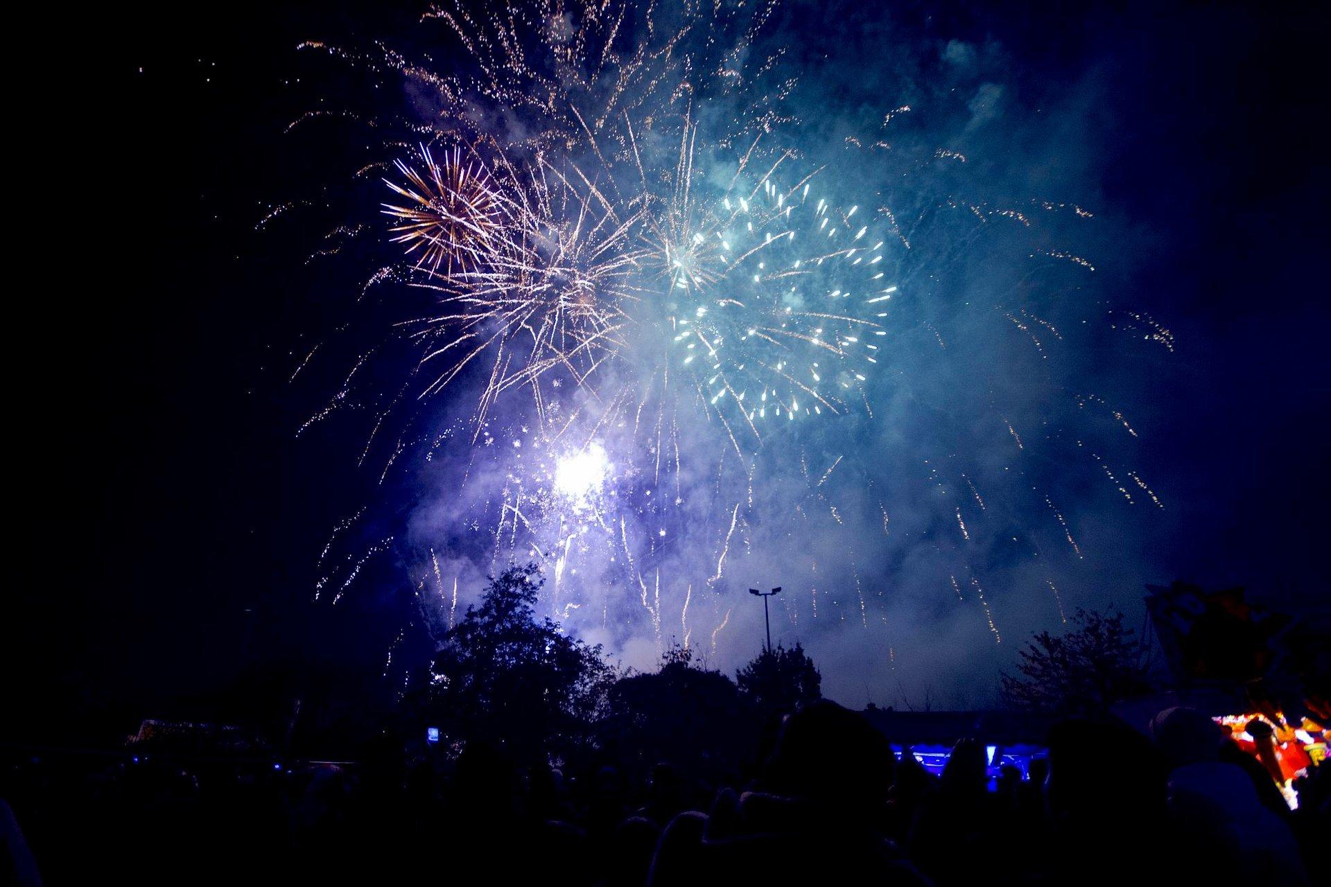 Walthamstow Fireworks Display