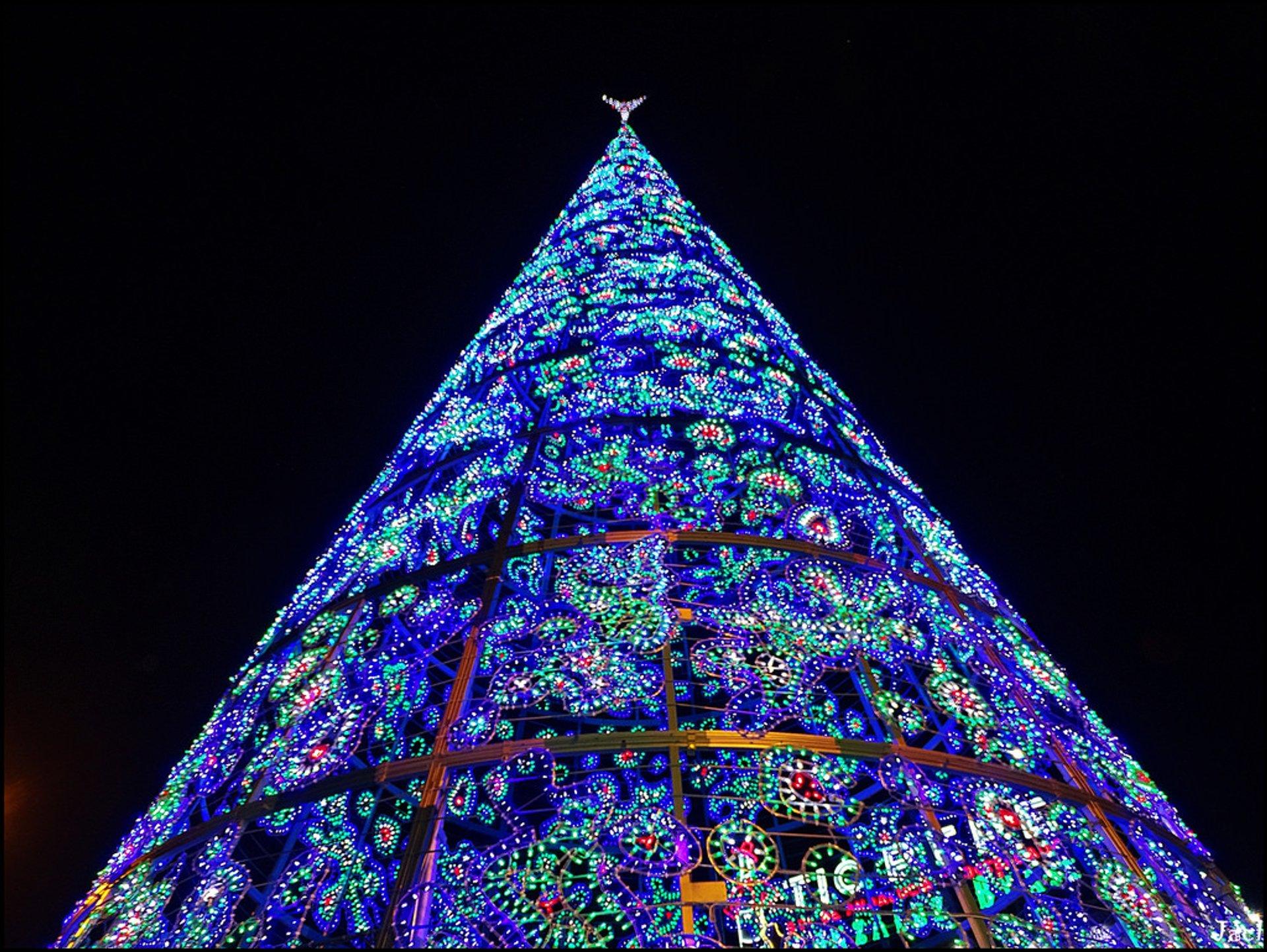 Christmas tree at La Puerta del Sol, Madrid 2020