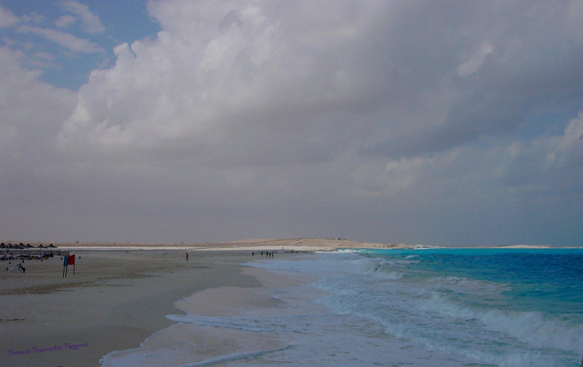 Egitto EL Alamein Mediterraneo 2020