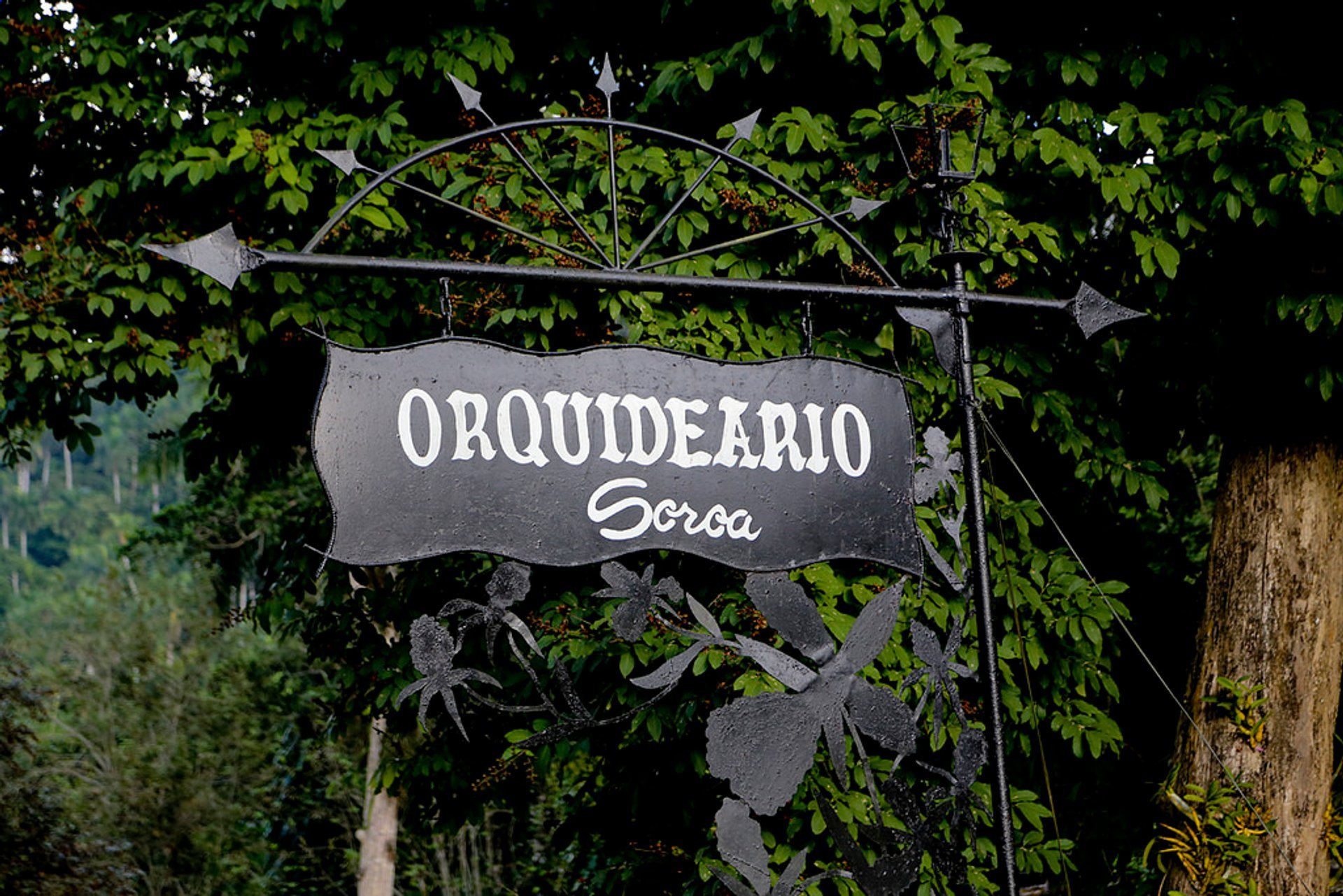 Orquideario de Soroa in Cuba - Best Season 2020