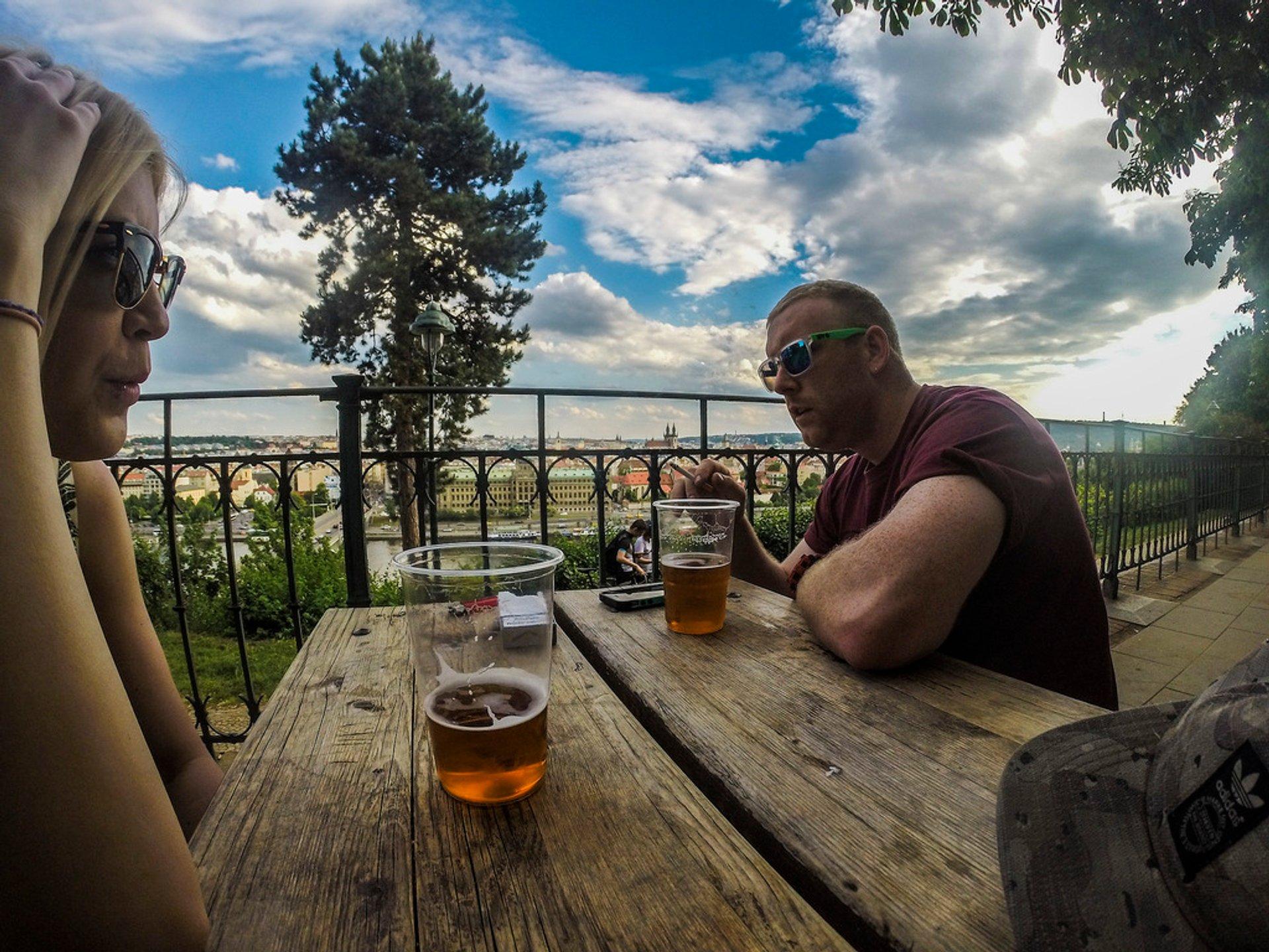 Hilltop beer garden 2020