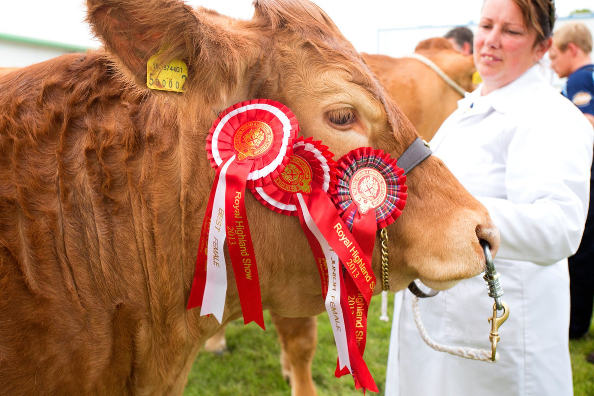 Royal Highland Show in Scotland 2019 - Best Time