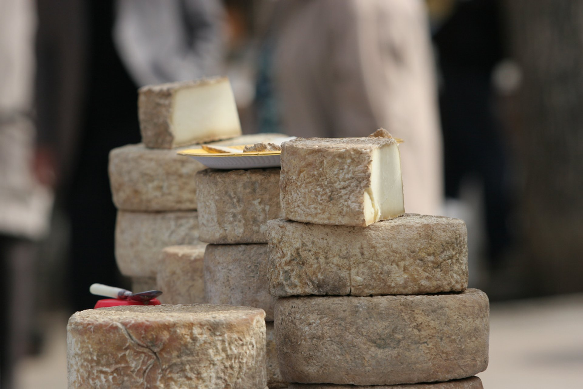 Venaco Cheese Fair or A Fiera di u Casgiu in Corsica - Best Season 2020