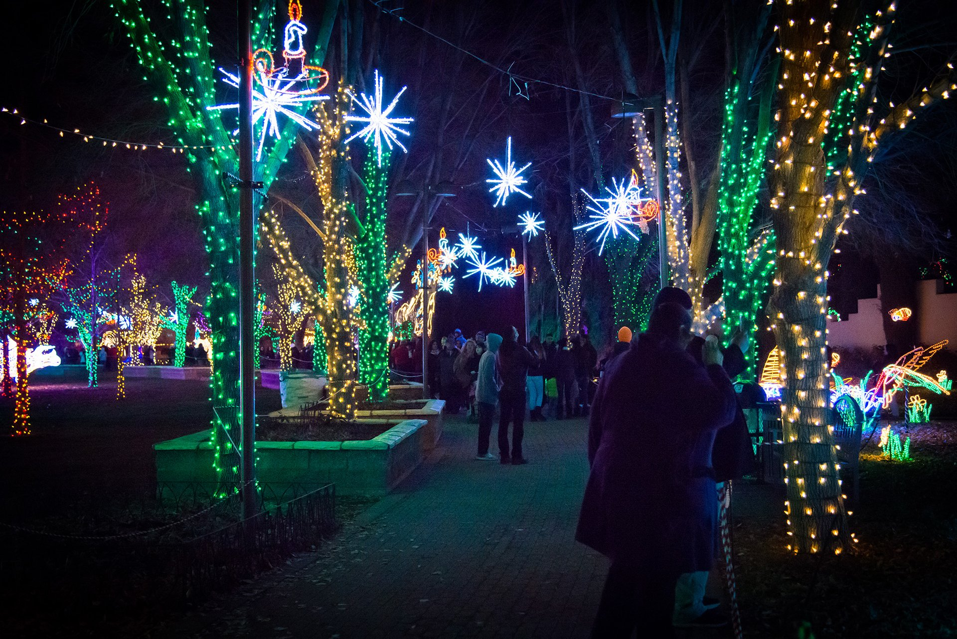 River of Lights in Albuquerque in New Mexico - Best Season 2020