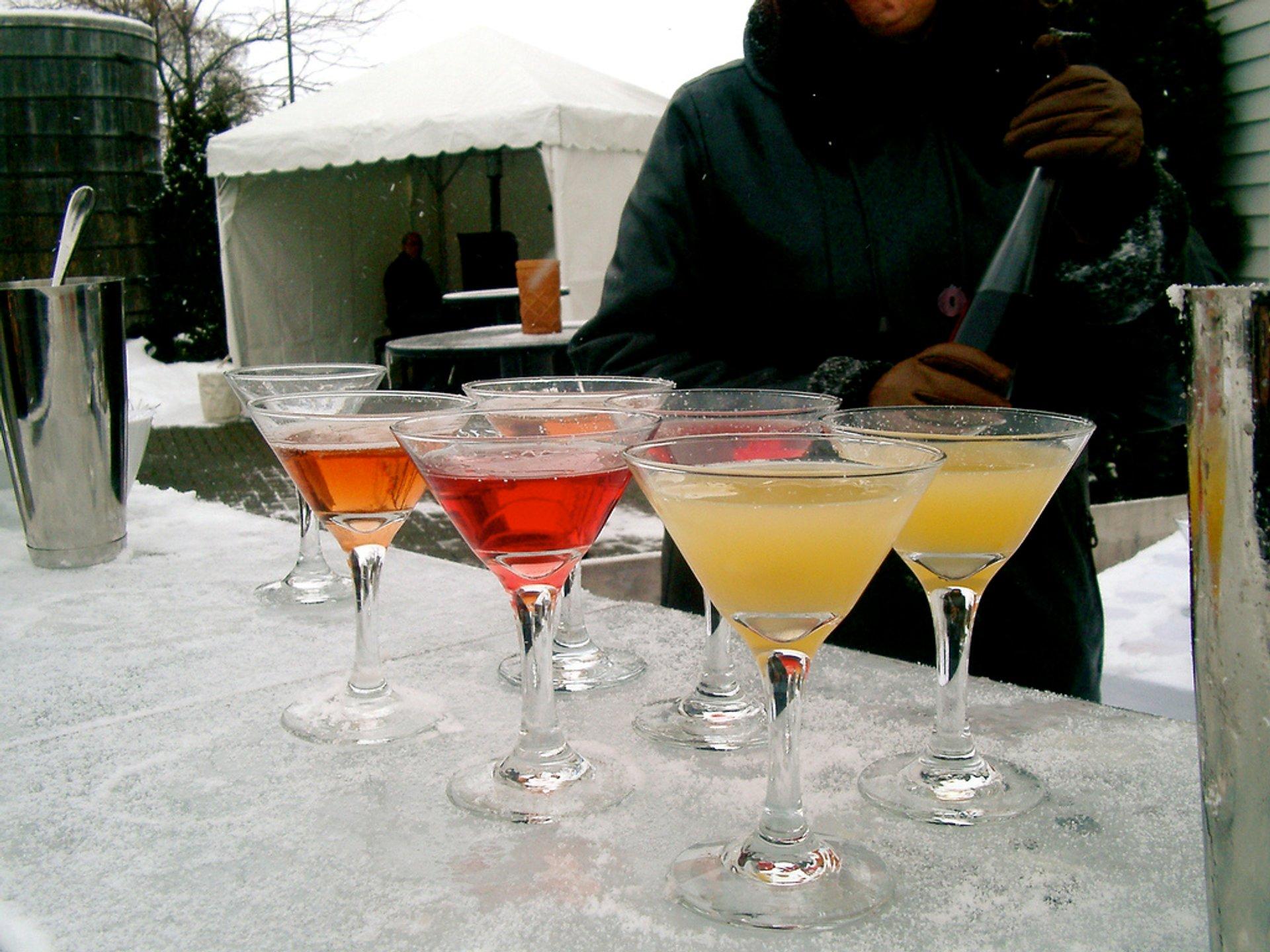 Niagara Icewine Festival in Niagara Falls - Best Time