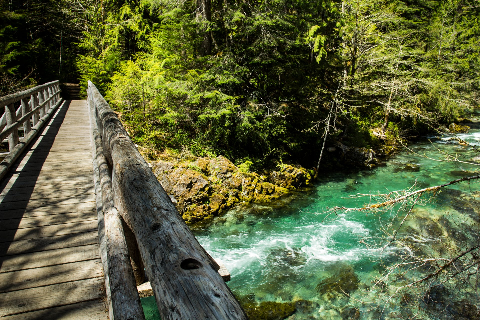 Opal Creek in Oregon 2020 - Best Time