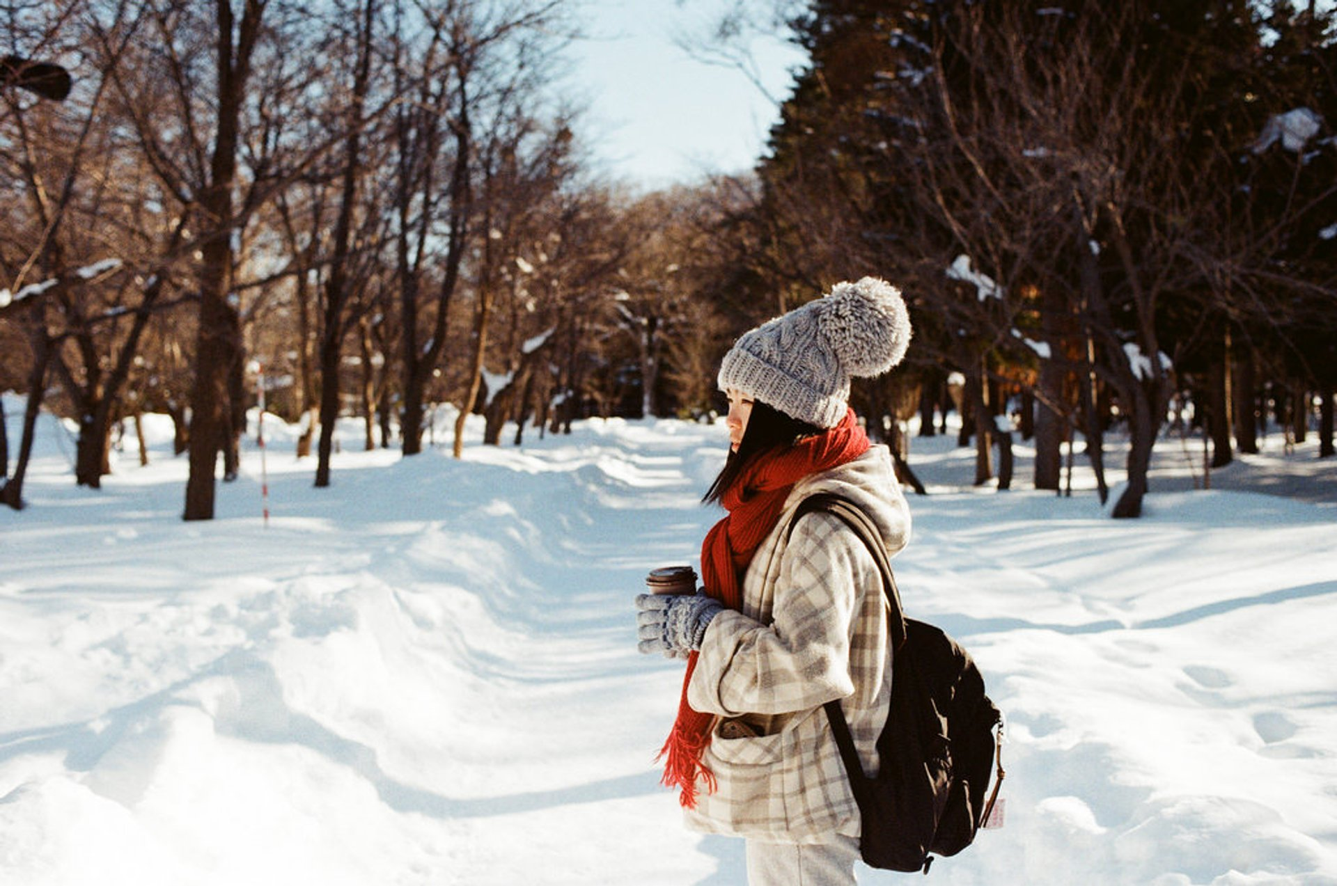 Winter in Japan - Best Time