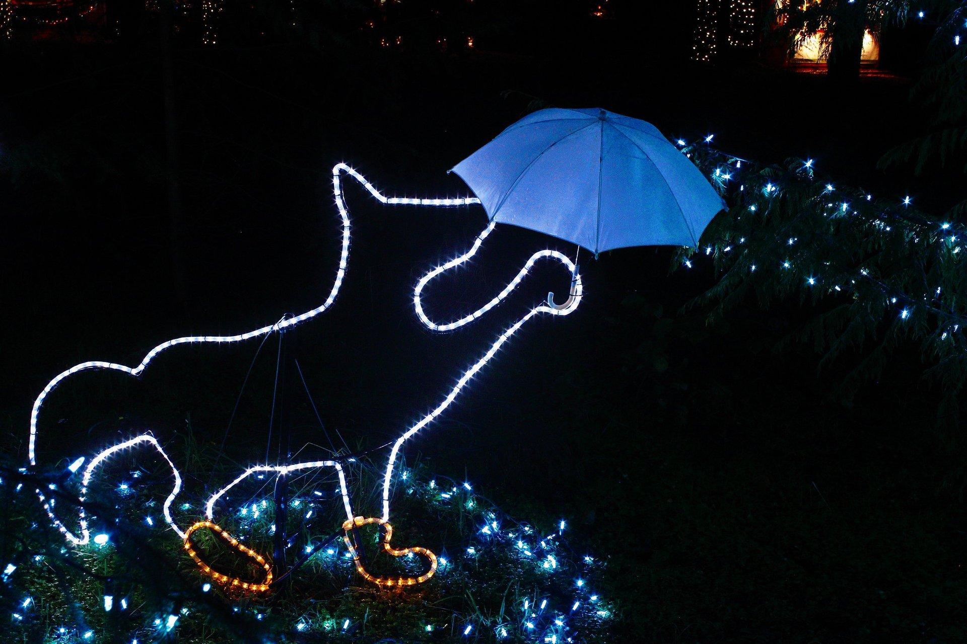 Christmas Lights in Oregon - Best Season 2020