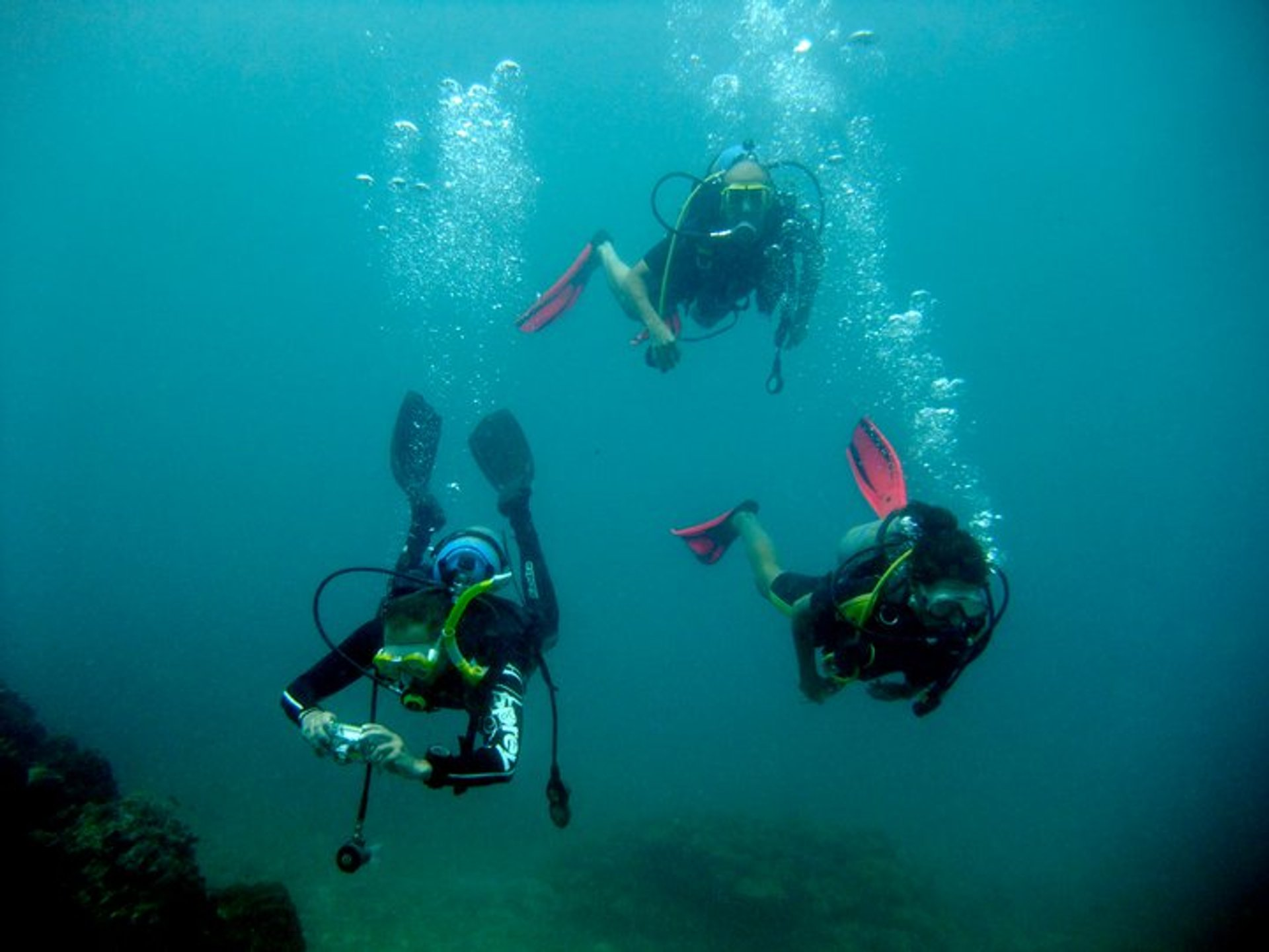 Diving in Goa 2020 - Best Time