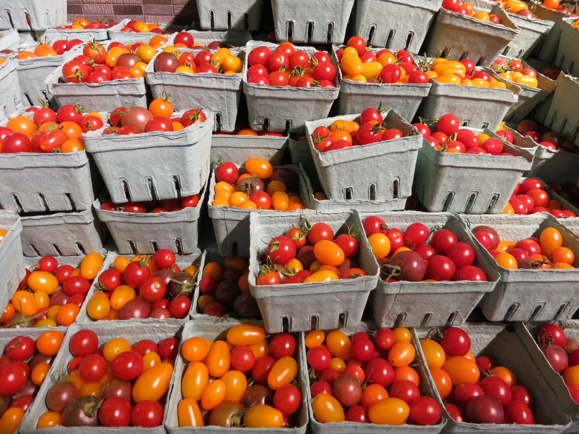 Heirloom cherry tomatoes at Wholefoods 2019