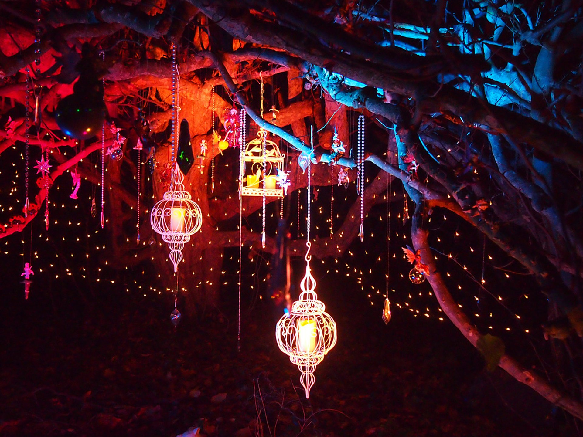 Enchanted Woodland at Syon Park in London - Best Season 2019