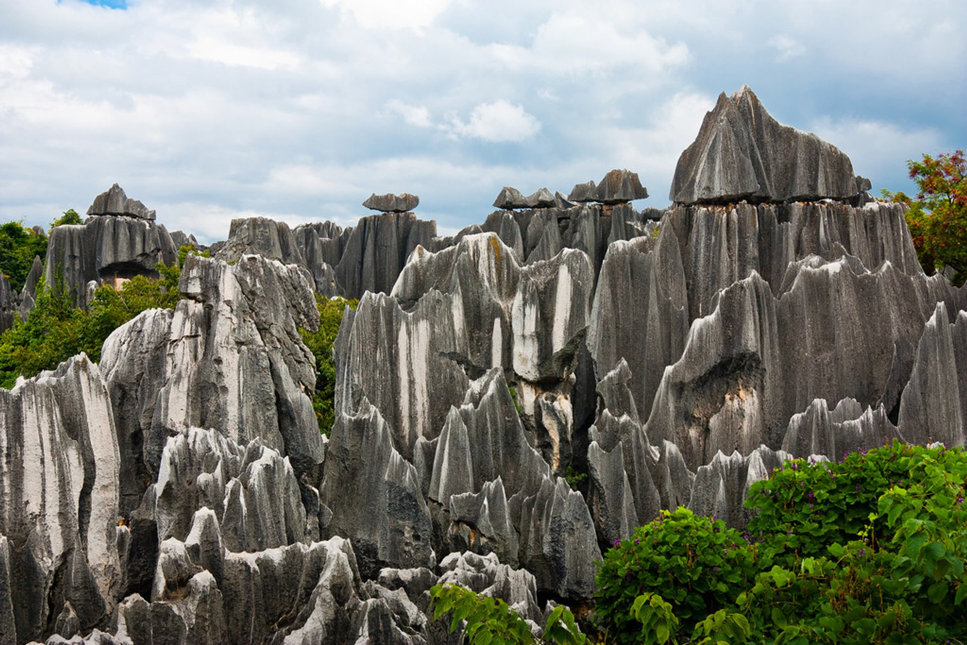 Shilin Stone Forest in China 2020 - Best Time