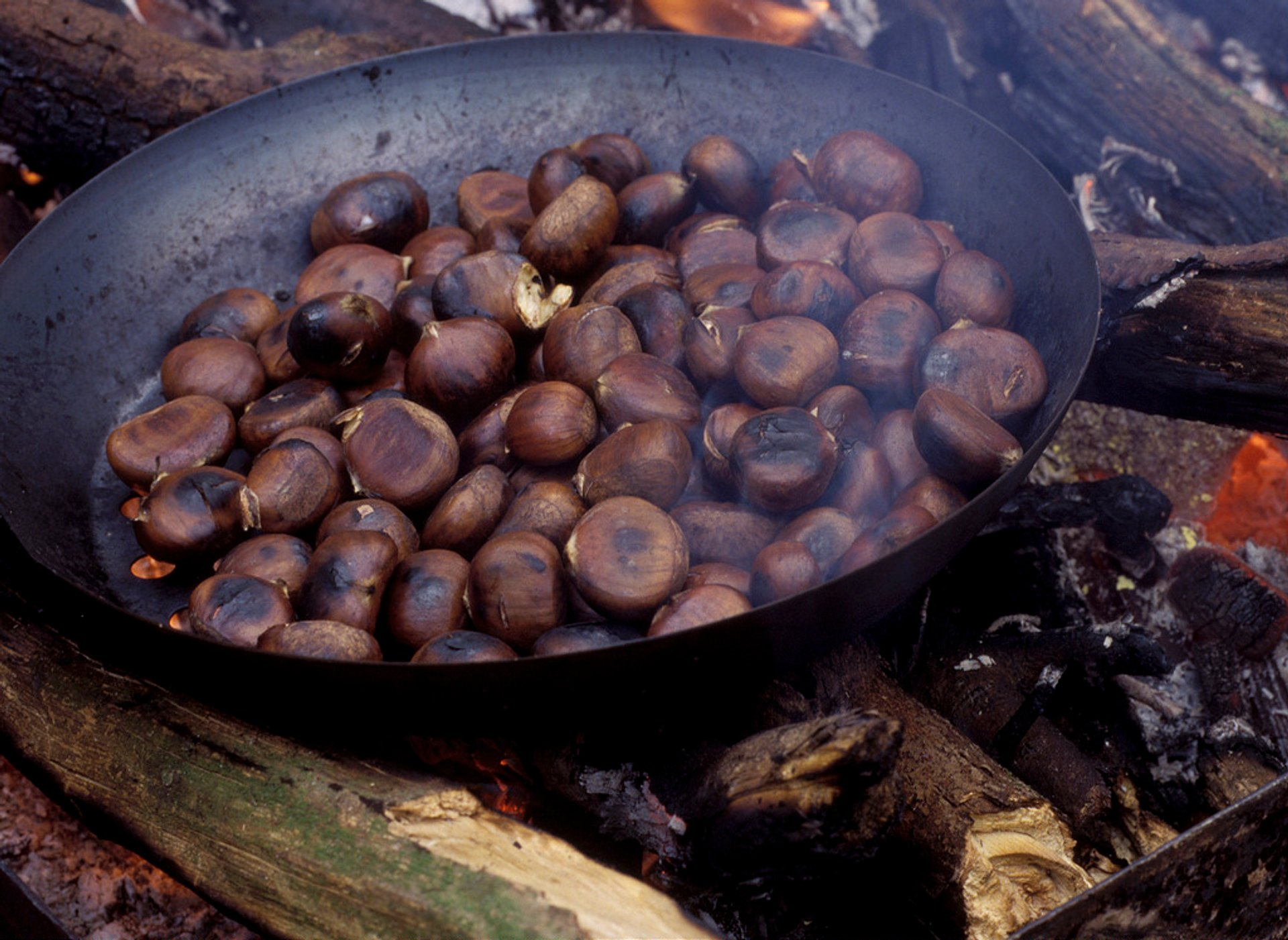 Chestnut Season and Fête de la Châtaigne in Provence & French Riviera 2020 - Best Time