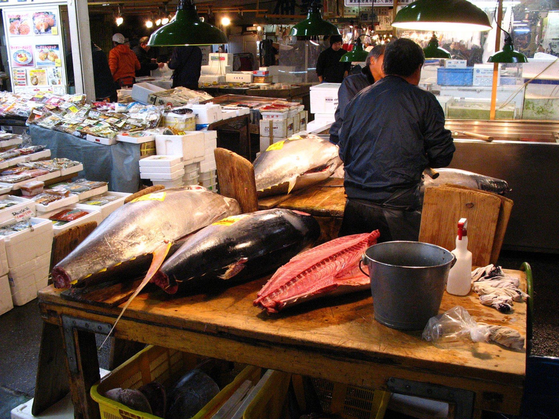 Best time for Toyosu Market in Tokyo