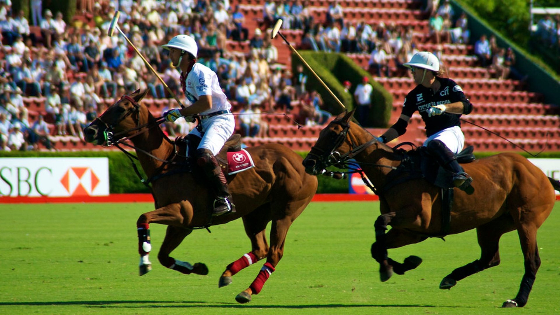 Campeonato Argentino Abierto de Polo (Argentine Polo Open Championship) in Buenos Aires - Best Time