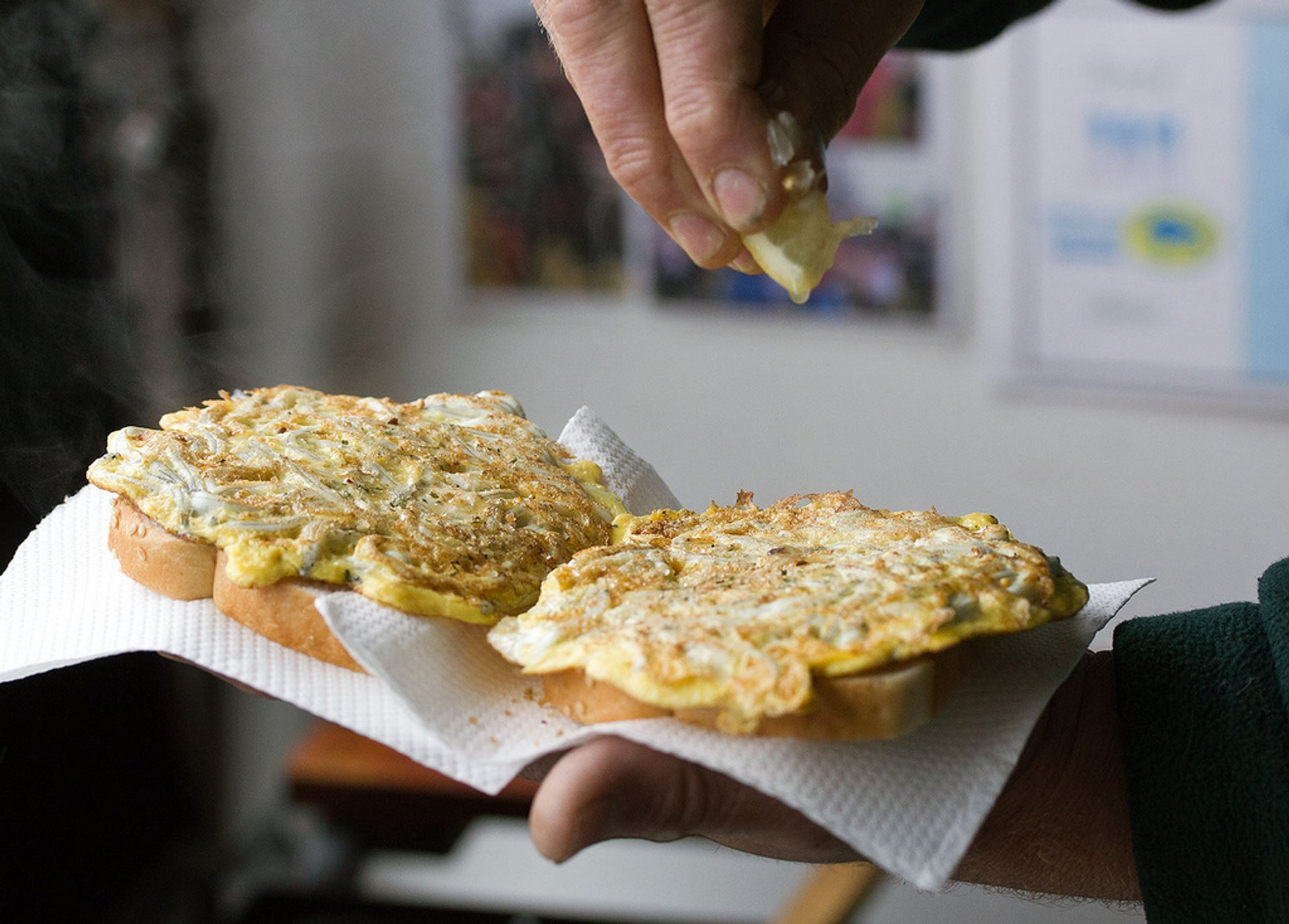Whitebait Season in New Zealand - Best Season 2020