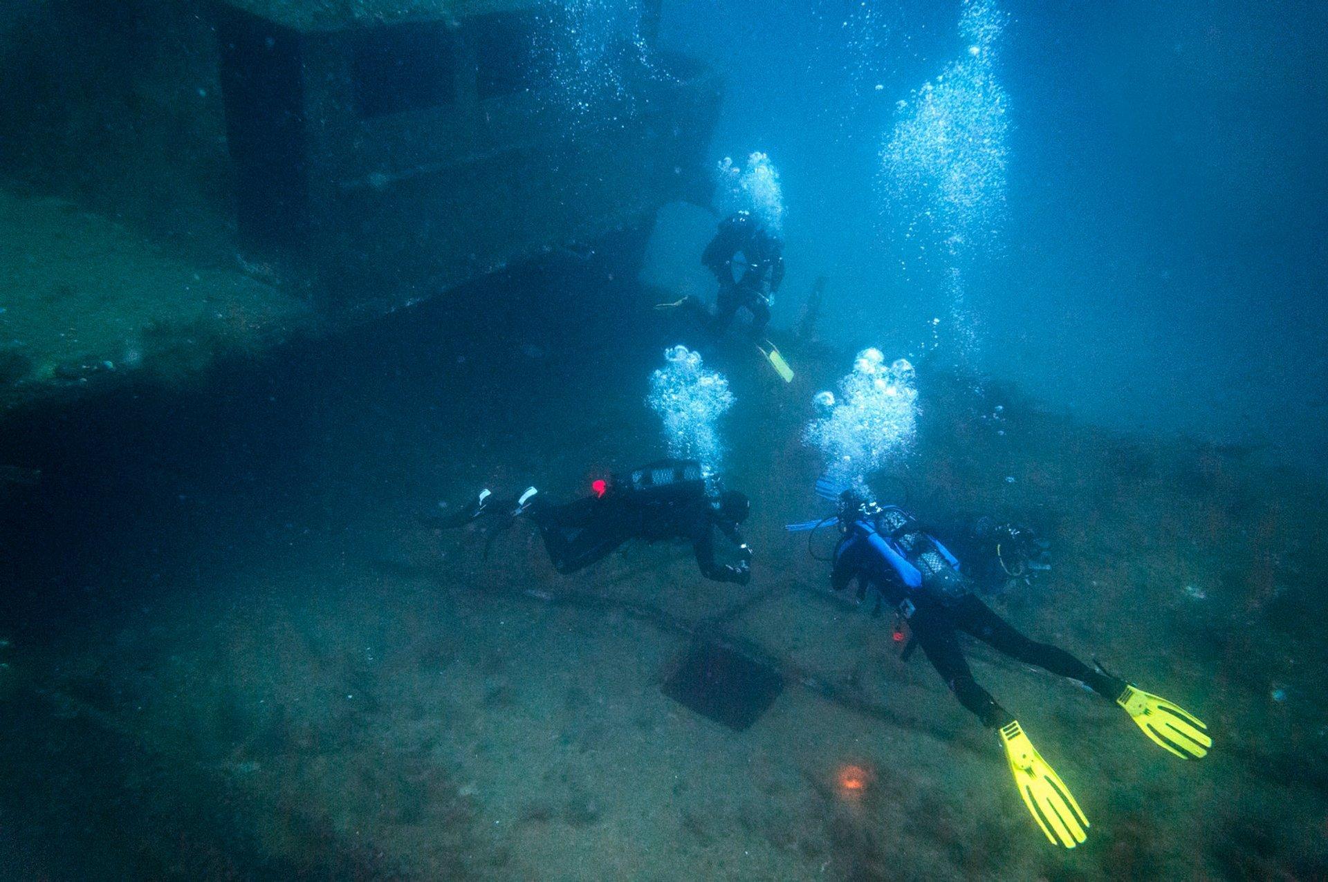 MV Cominoland Gozo Wreck dive 2020