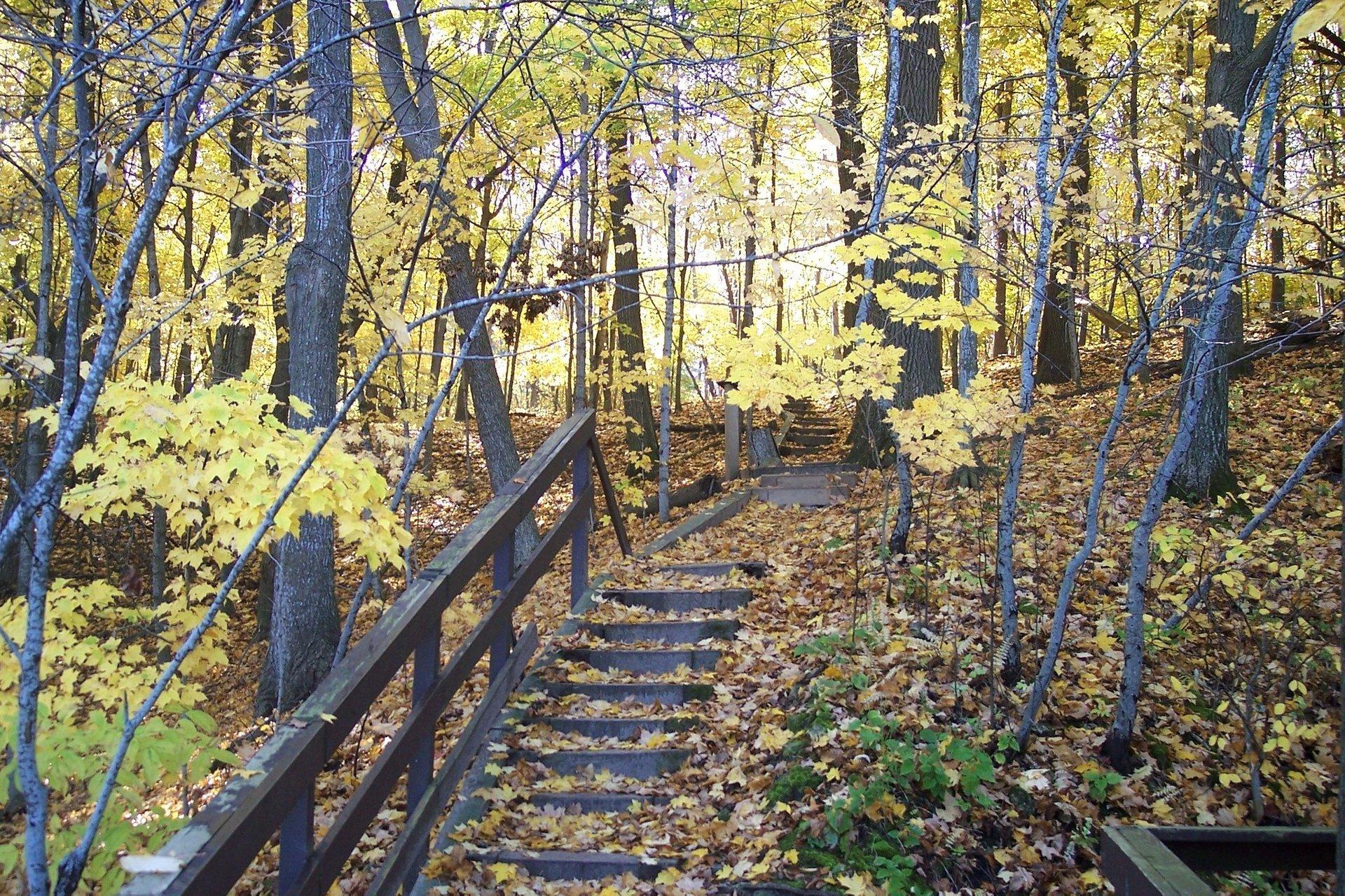 Frontenac State Park, Minnesota 2020