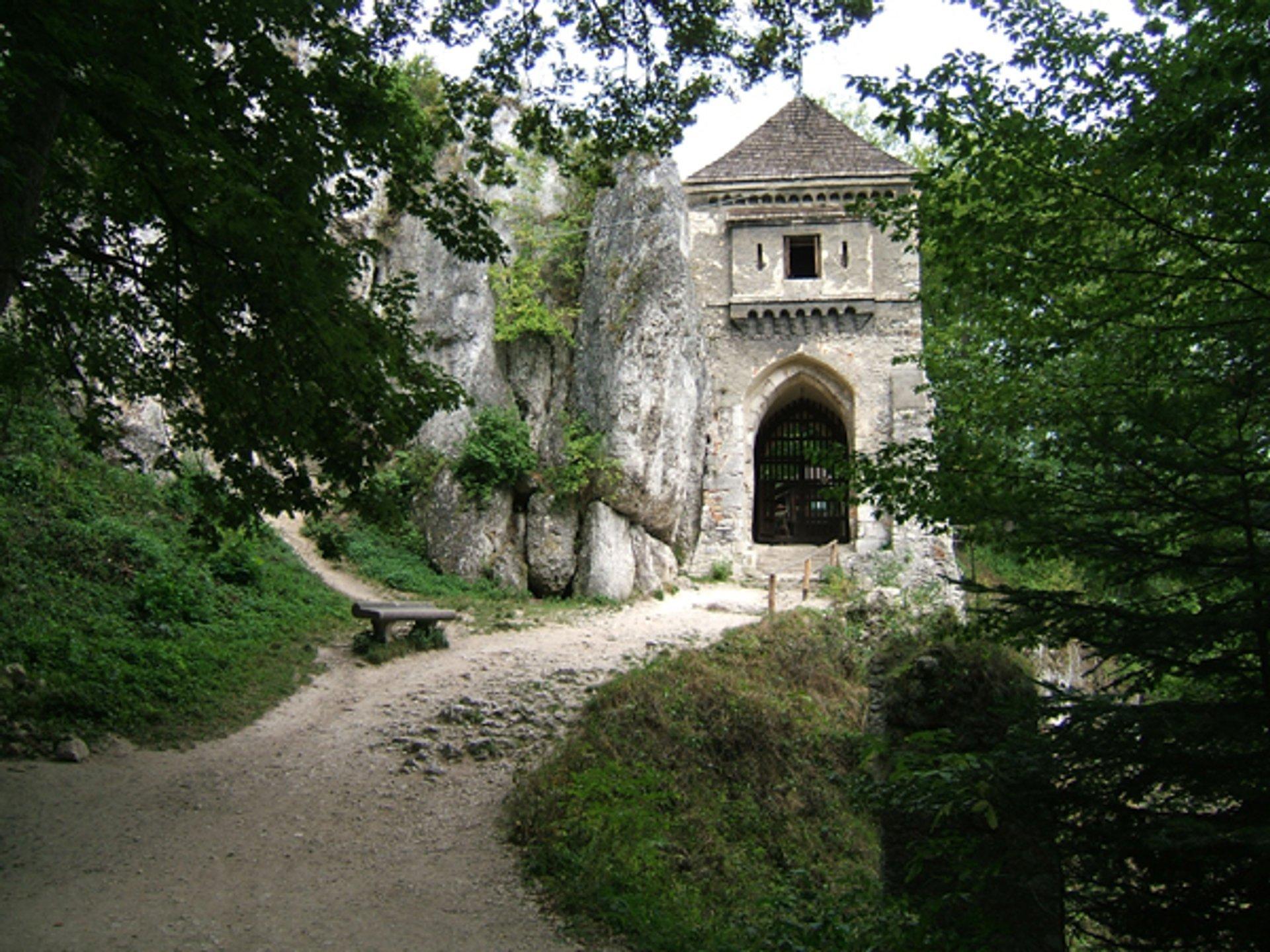 Gothic Castle 2020