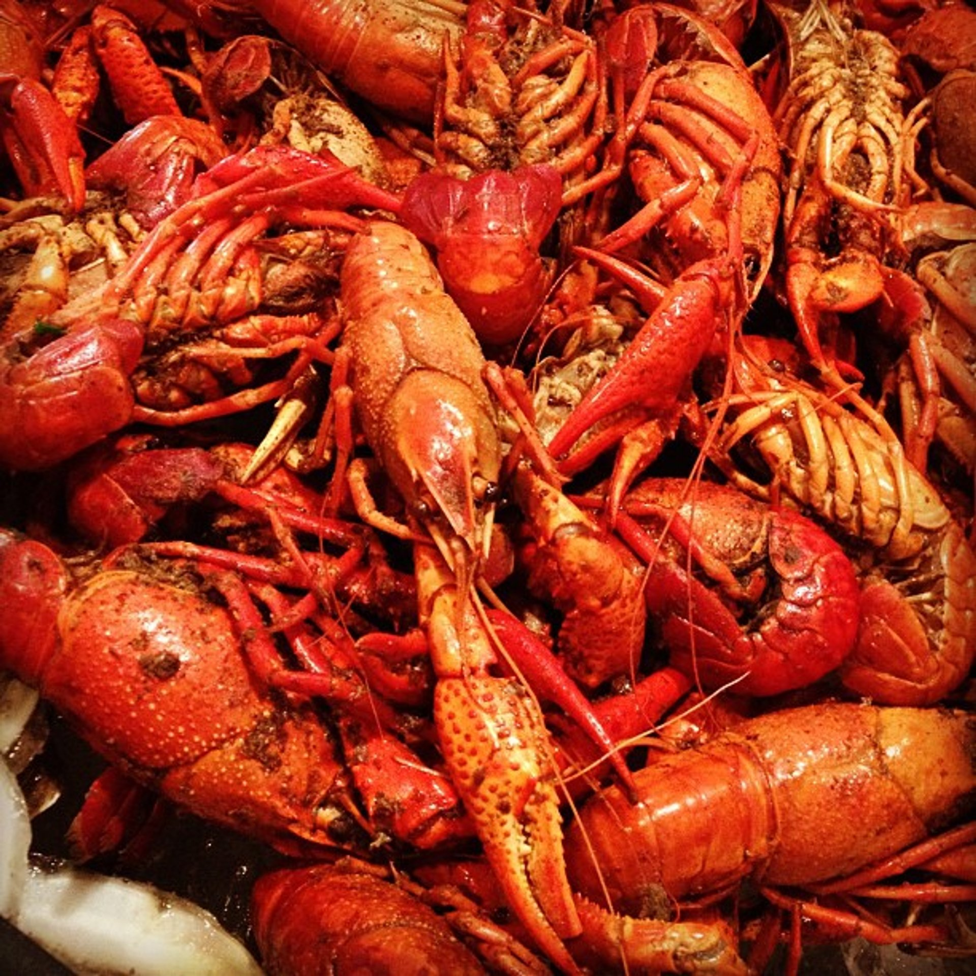 Crawfish Season in New Orleans 2020 - Best Time