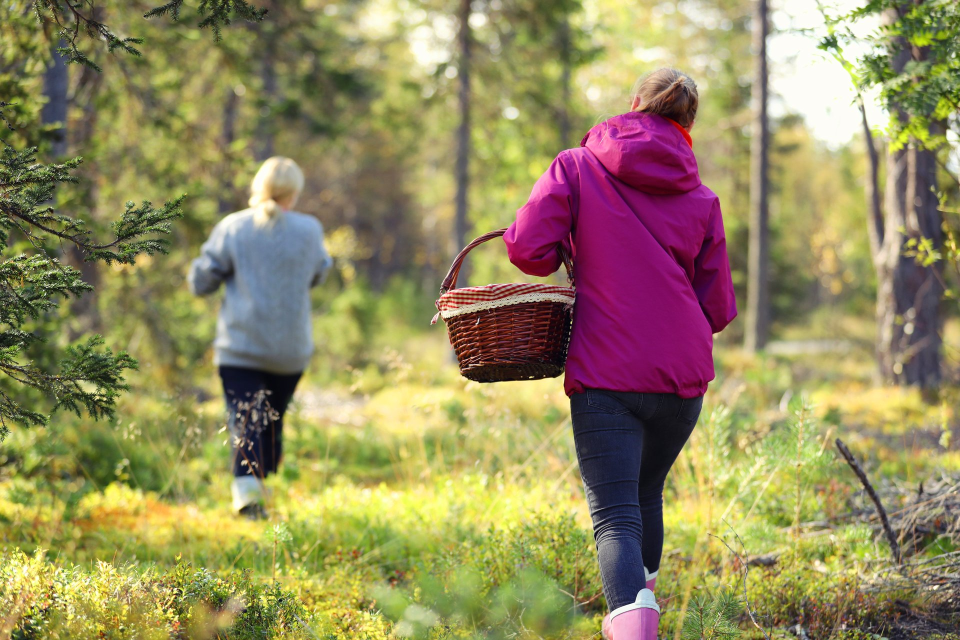 Kuusamo Folk Healers' Gathering in Finland - Best Season 2019