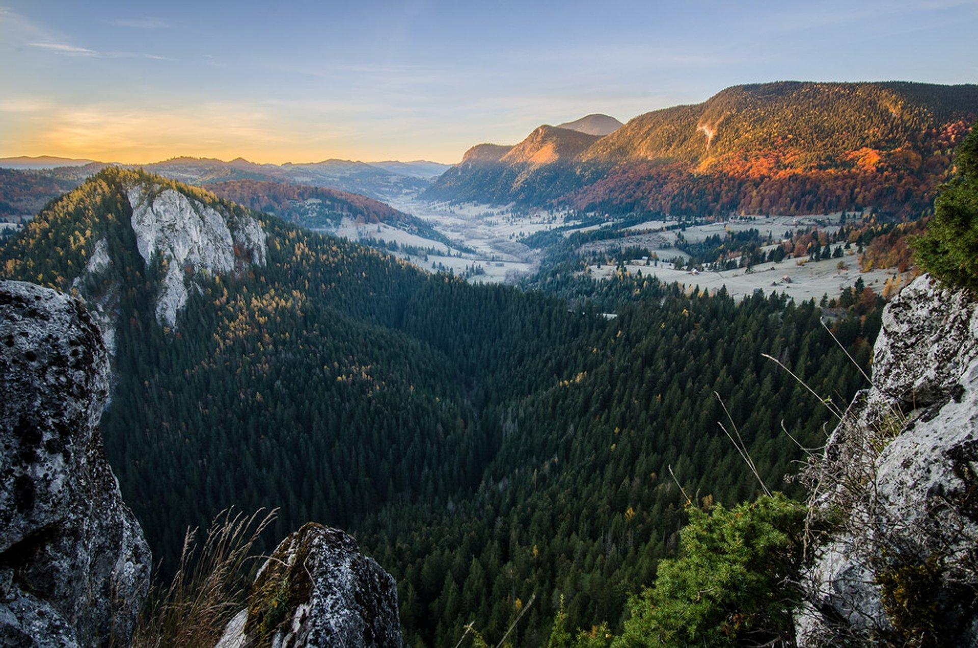 Raul Bicajel valley, Transylvania 2020