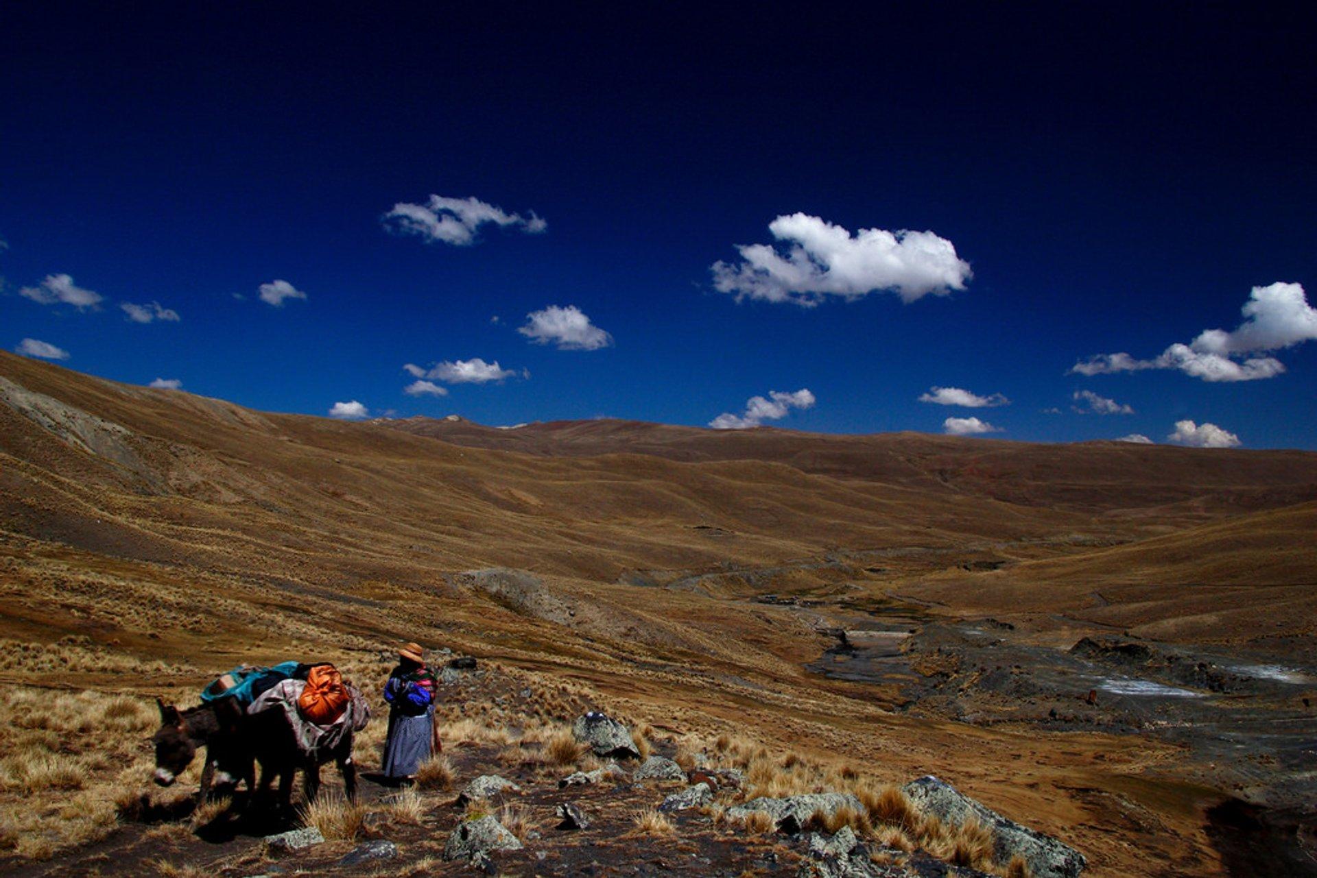 Cordillera Real  2020