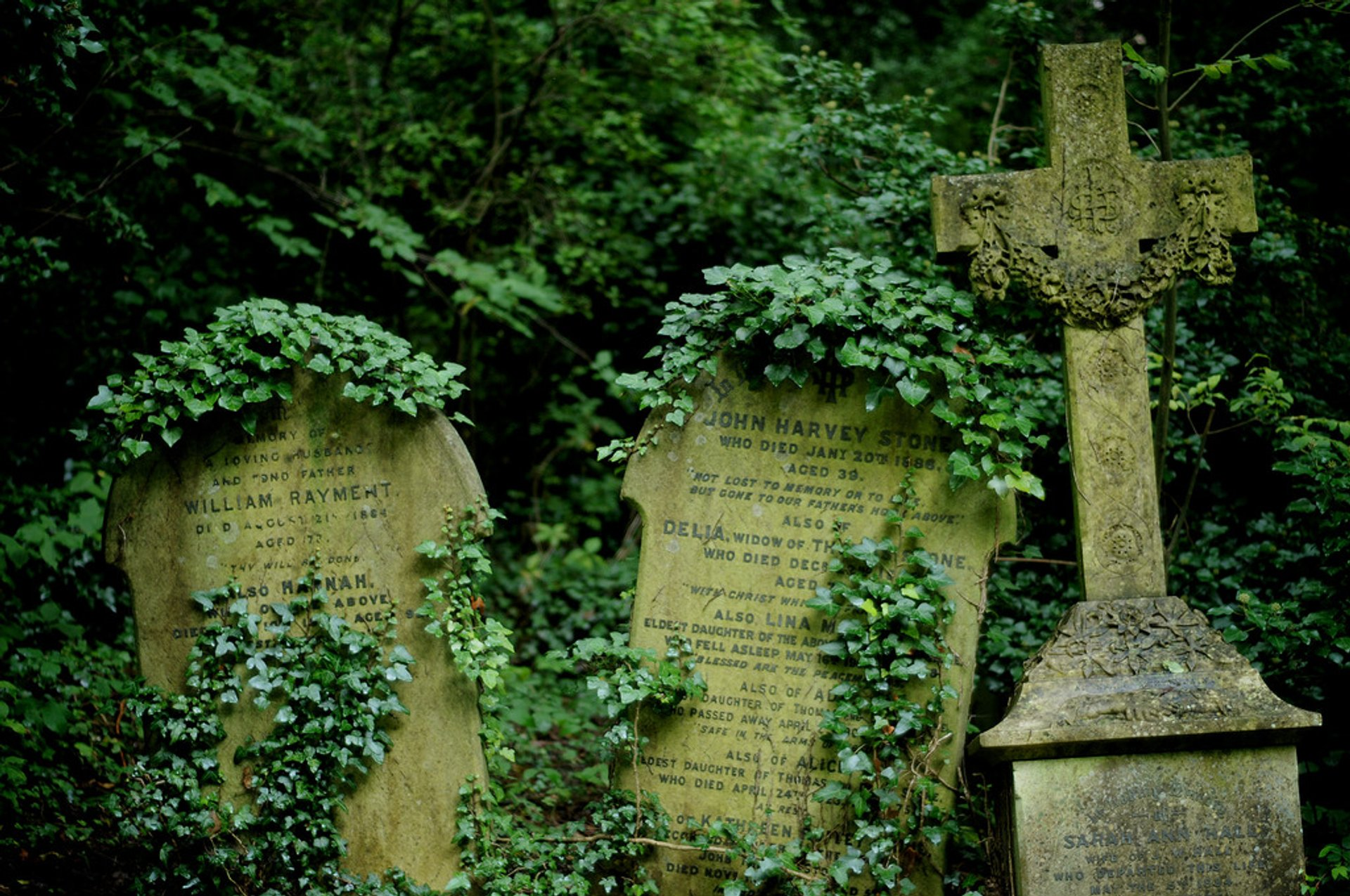 Highgate Cemetery in London 2020 - Best Time