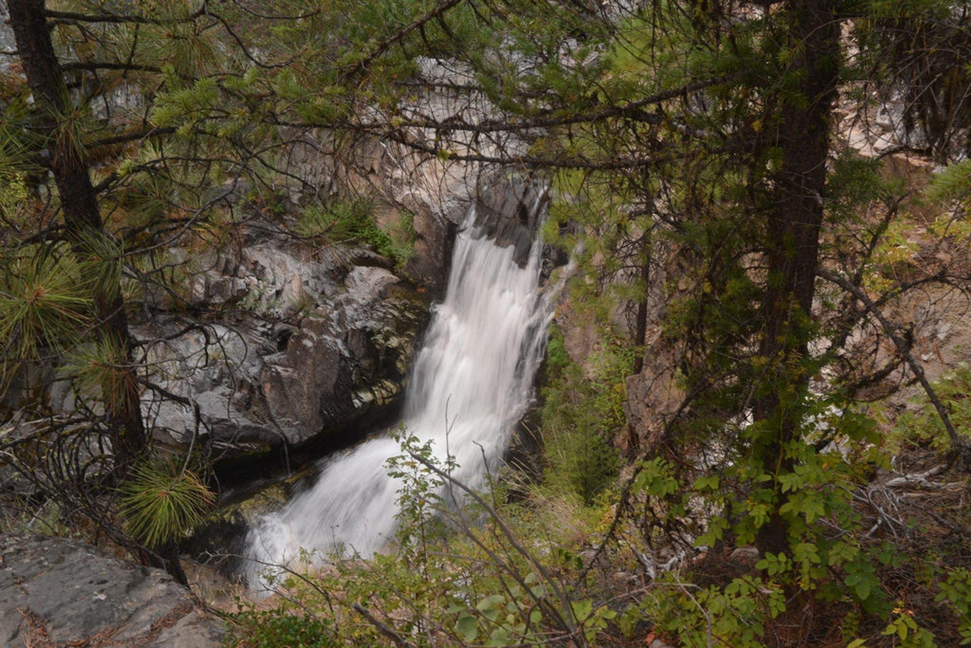 Falls Creek Falls 2019