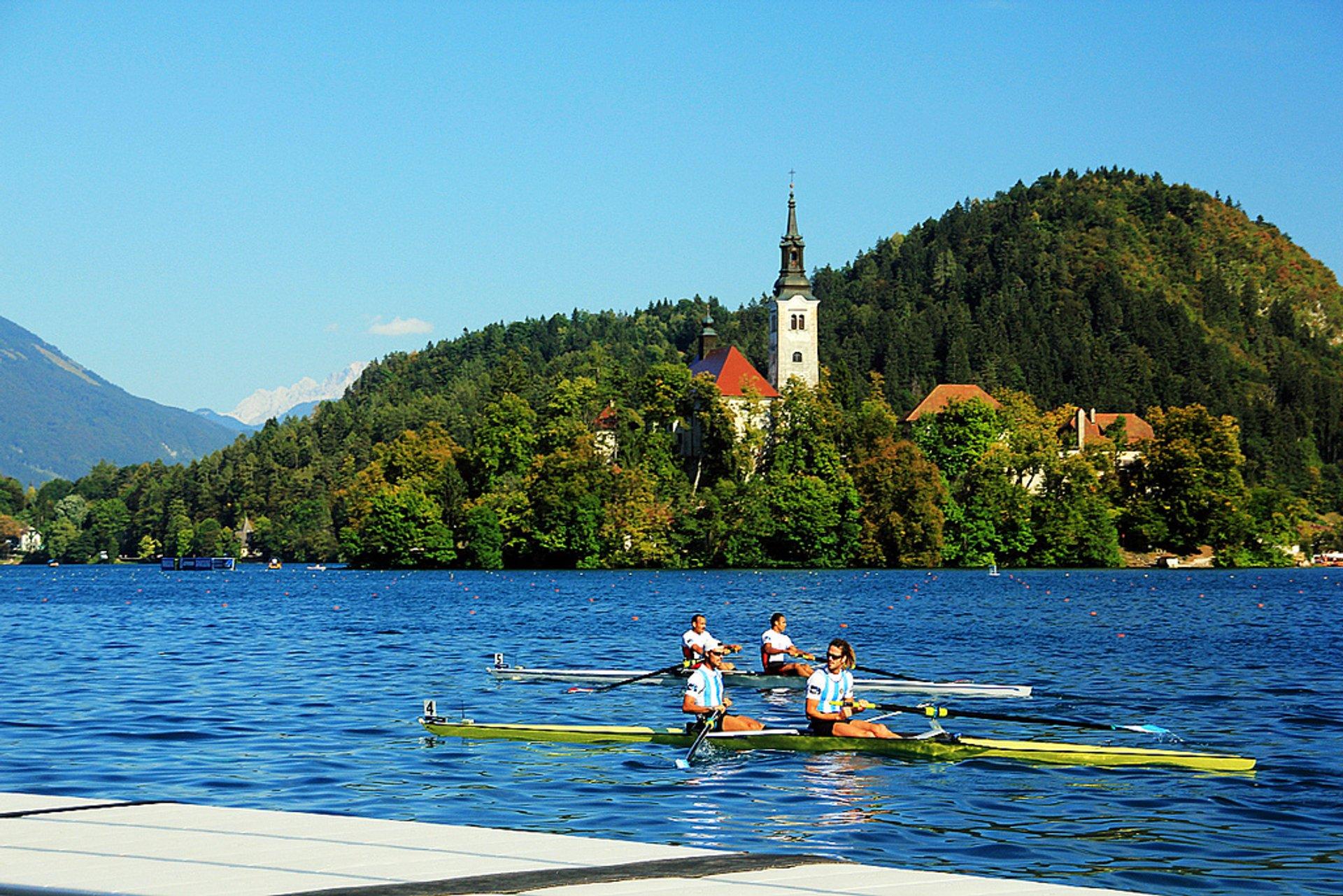 International Rowing Regatta in Slovenia 2020 - Best Time