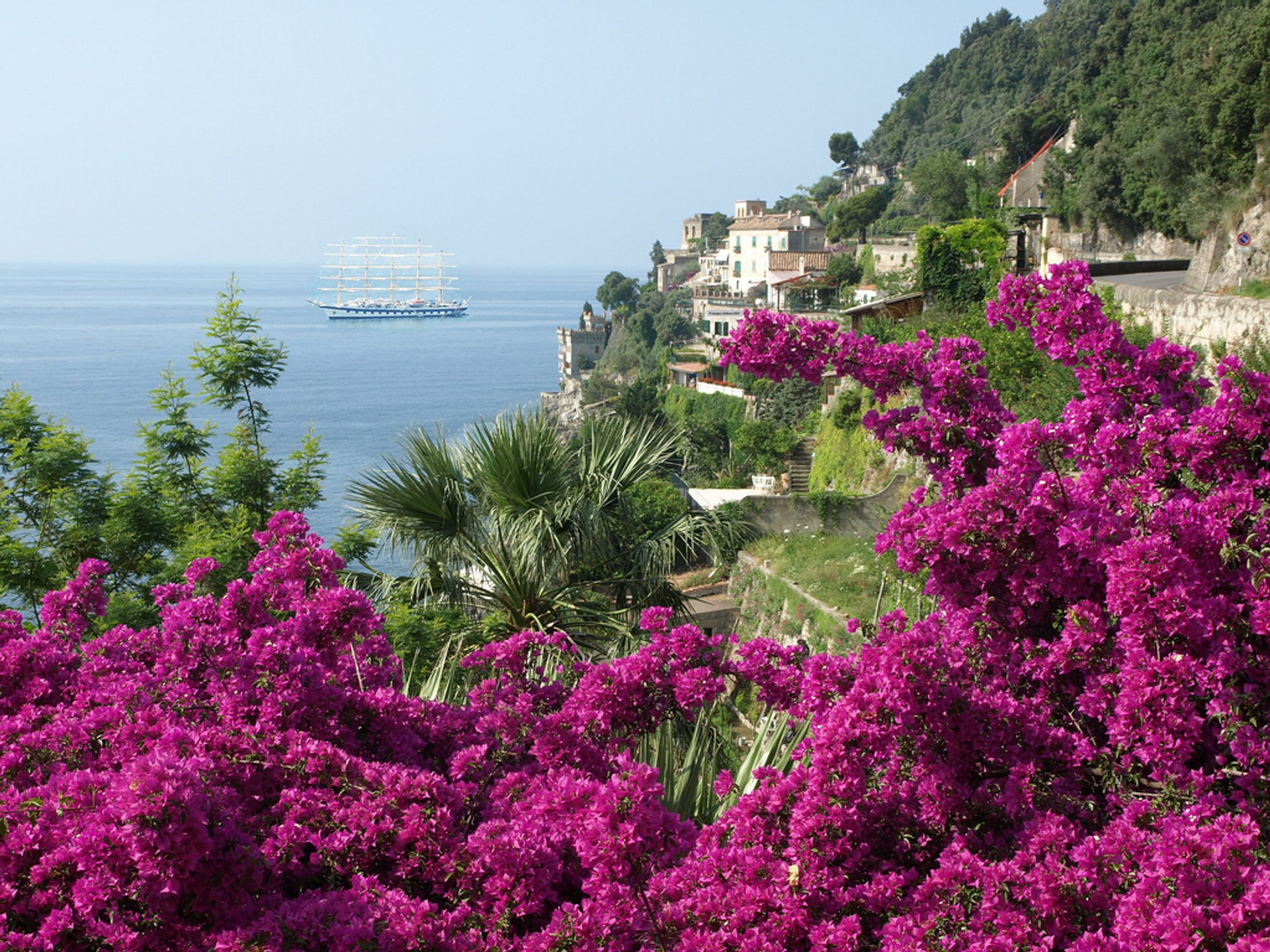 Bougainvillea in Amalfi Coast - Best Season