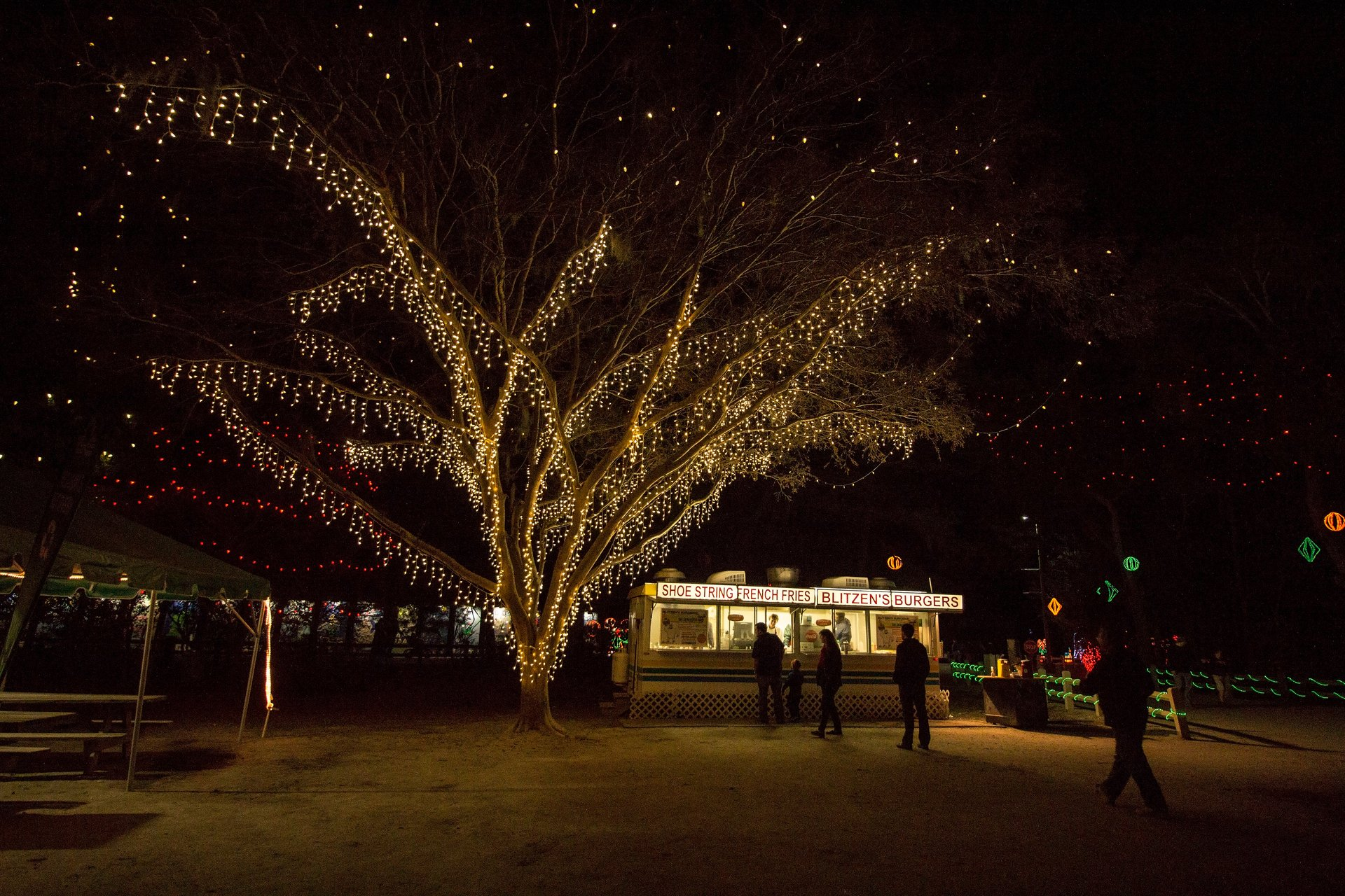 Best time to see James Island Holiday Festival of Lights 2020