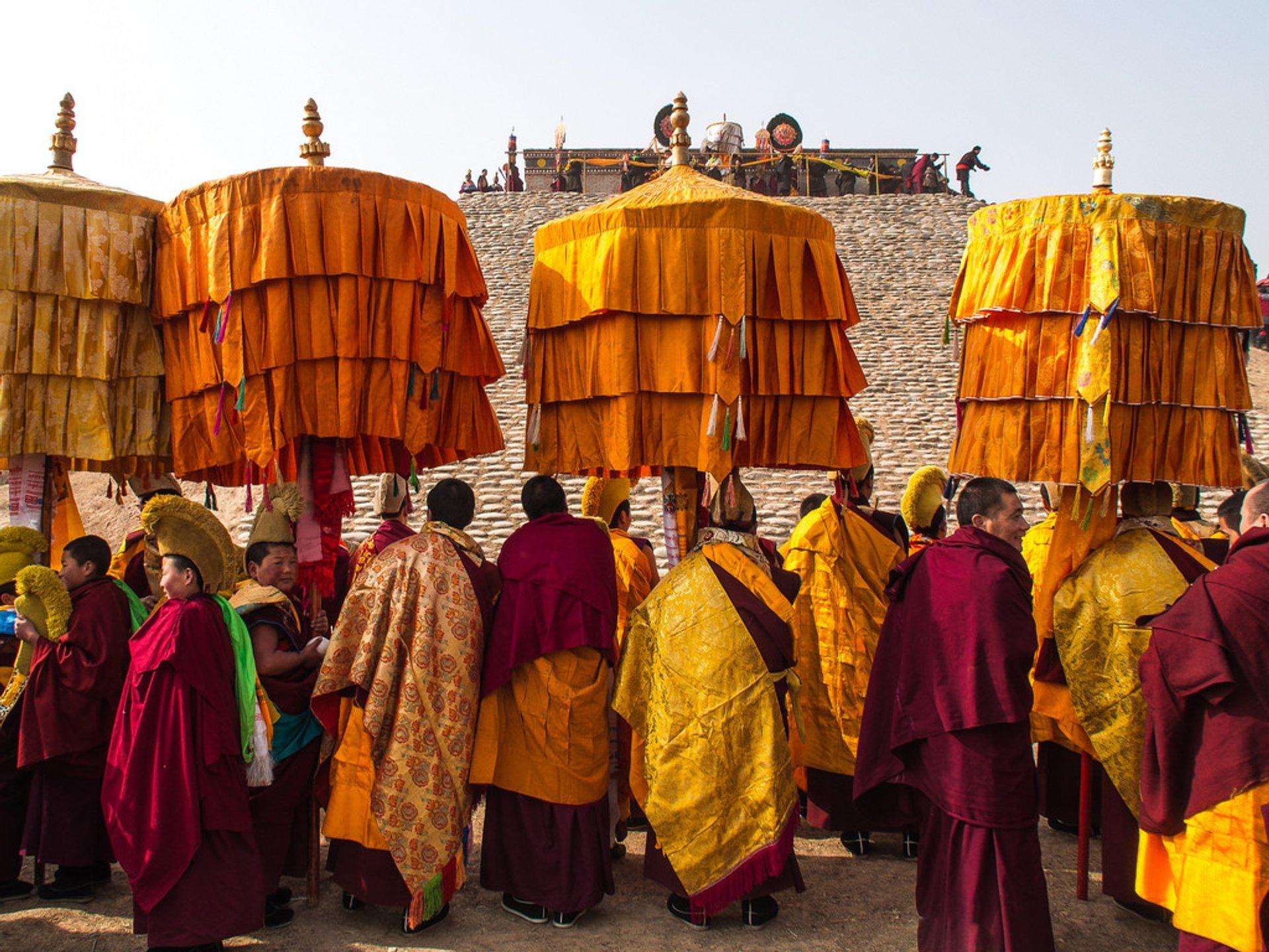 Sunning the Buddha 2020