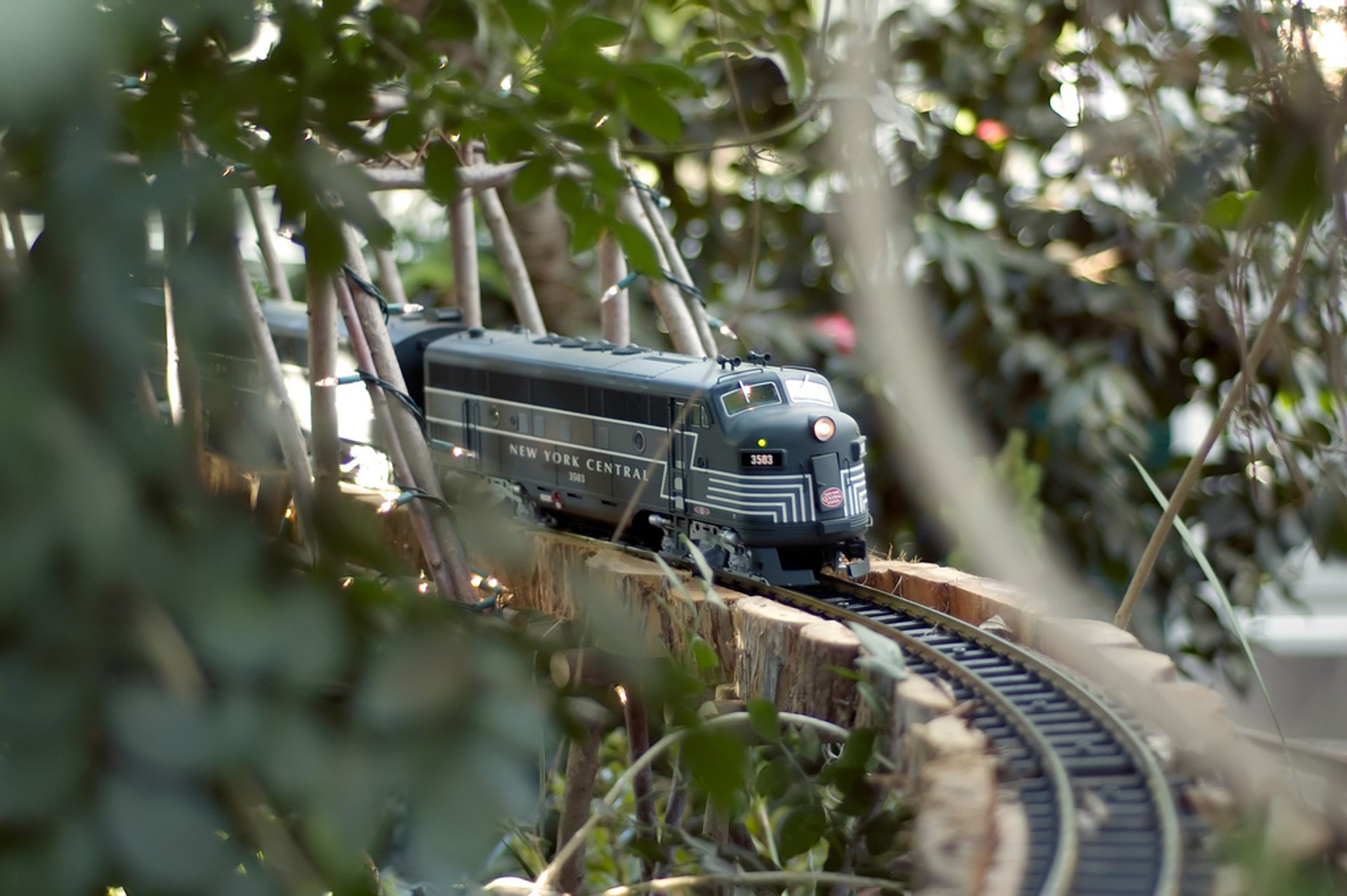 Holiday Train Show in New York 2020 - Best Time