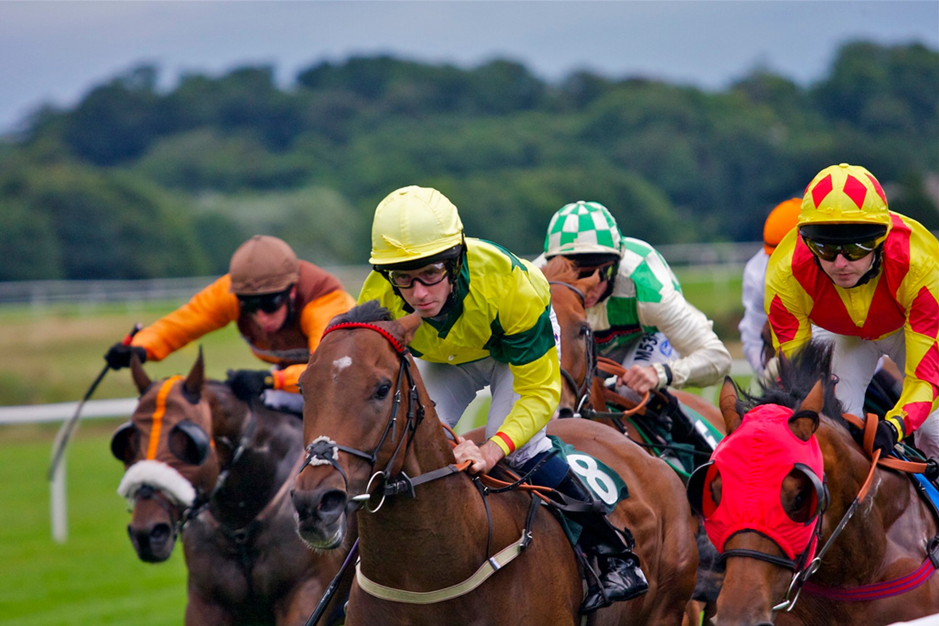 Horse Flat Racing Season in Edinburgh 2019 - Best Time