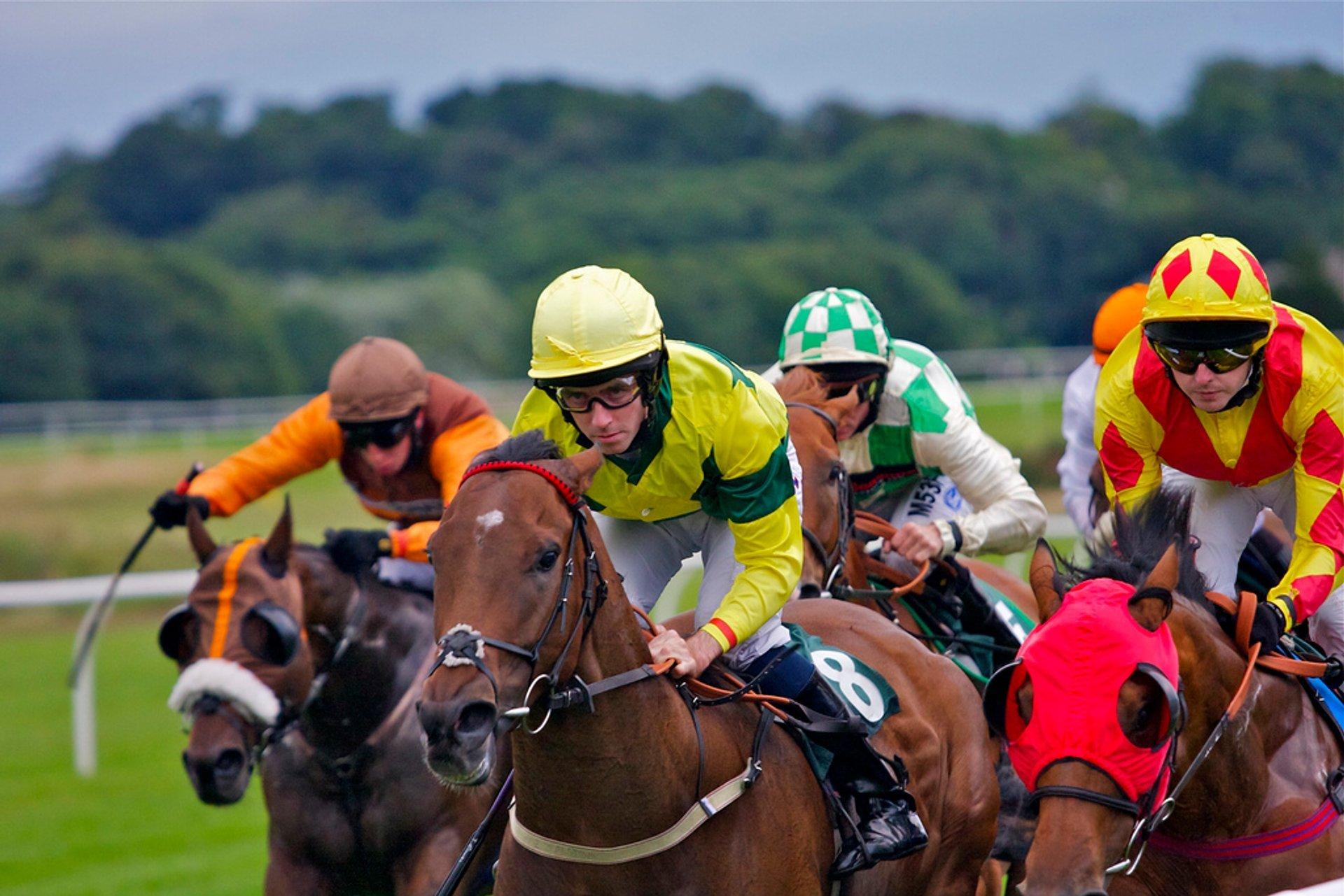 Horse Flat Racing Season in Edinburgh 2020 - Best Time