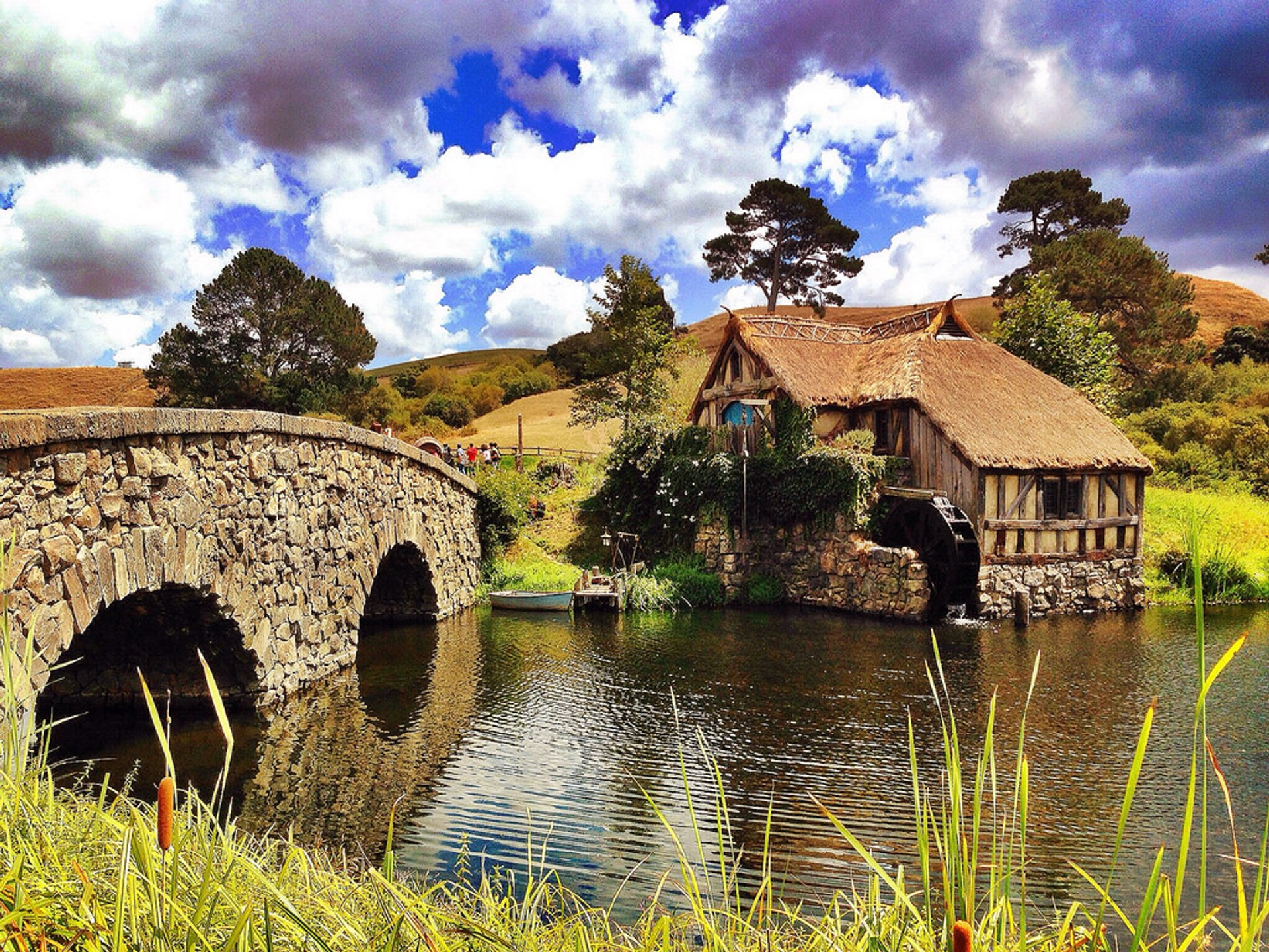 Best time to see Hobbiton in New Zealand 2020