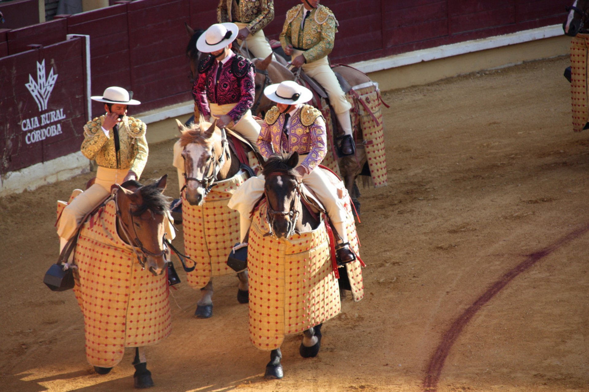 Bullfighting Season in Spain - Best Season 2020