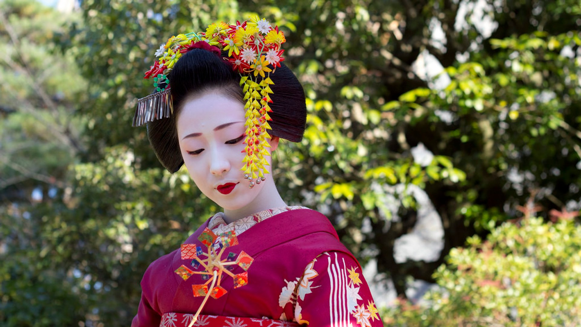 Geisha Dances in Kyoto in Kyoto - Best Season