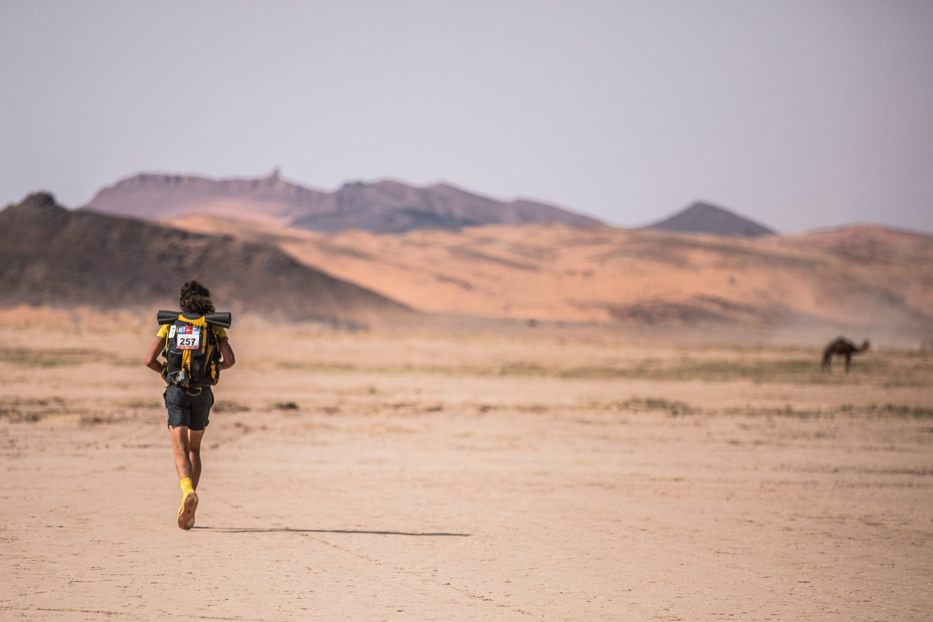 Best time for Marathon Des Sables (MDS) 2019