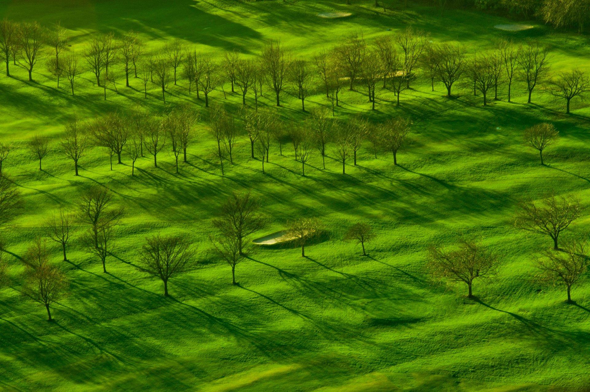 Golf Season in Edinburgh 2020 - Best Time