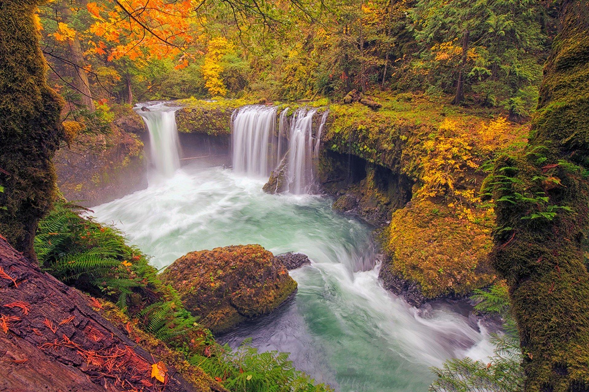 Spirit Falls, Washington 2020