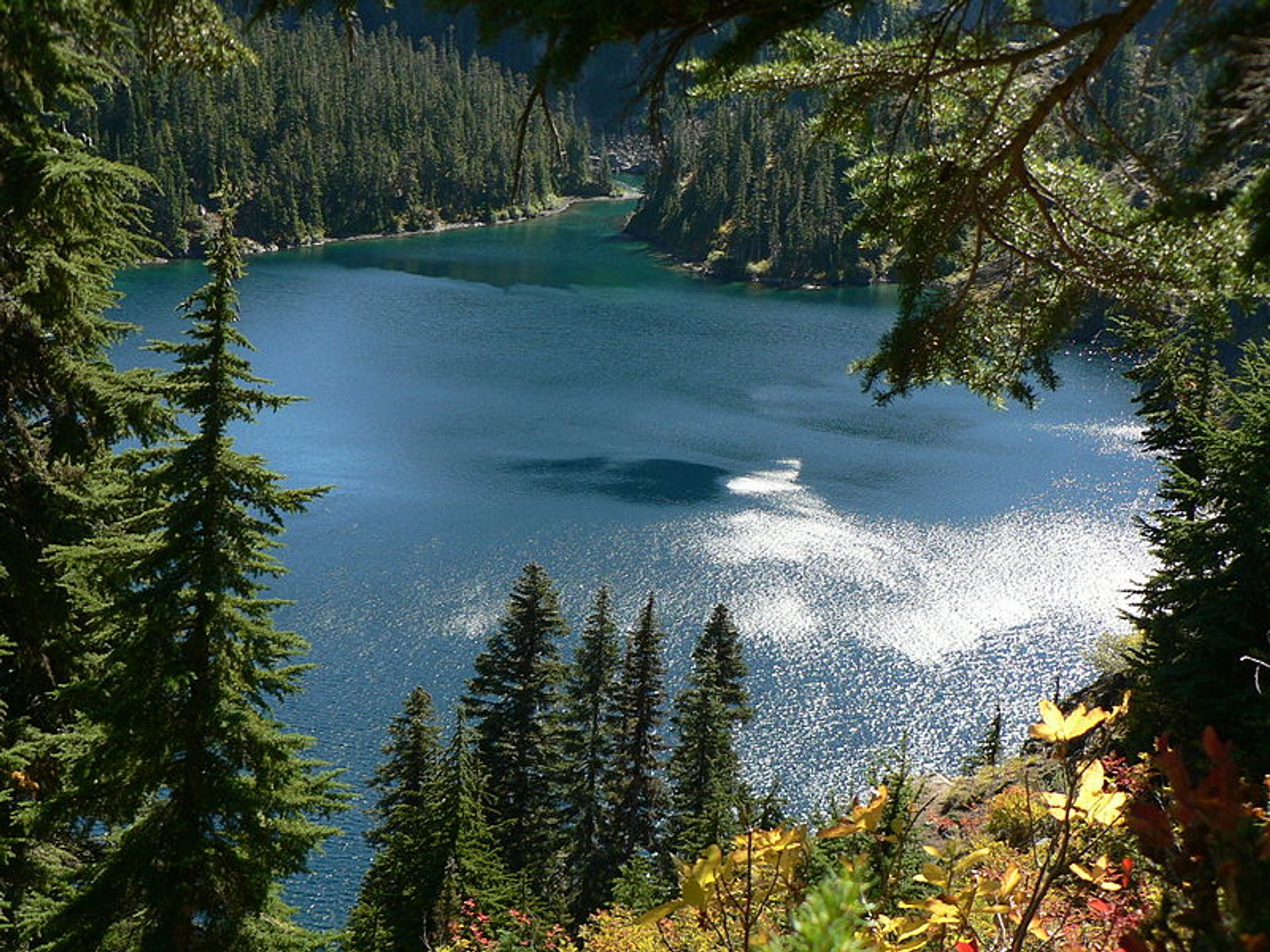 Rachel Lake 4640+ feet, Subalpine Fir and Mountain Hemlock forest 2020