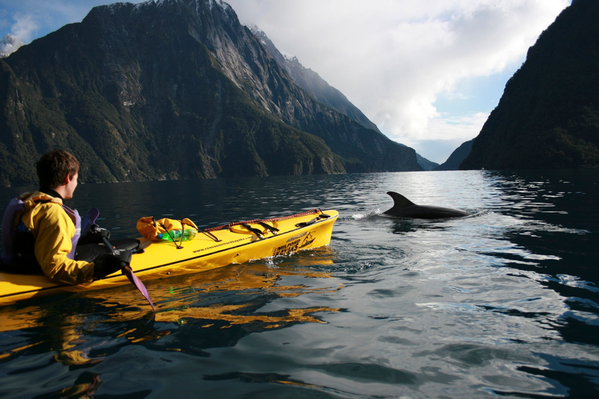 Milford Sound Kayak 2020