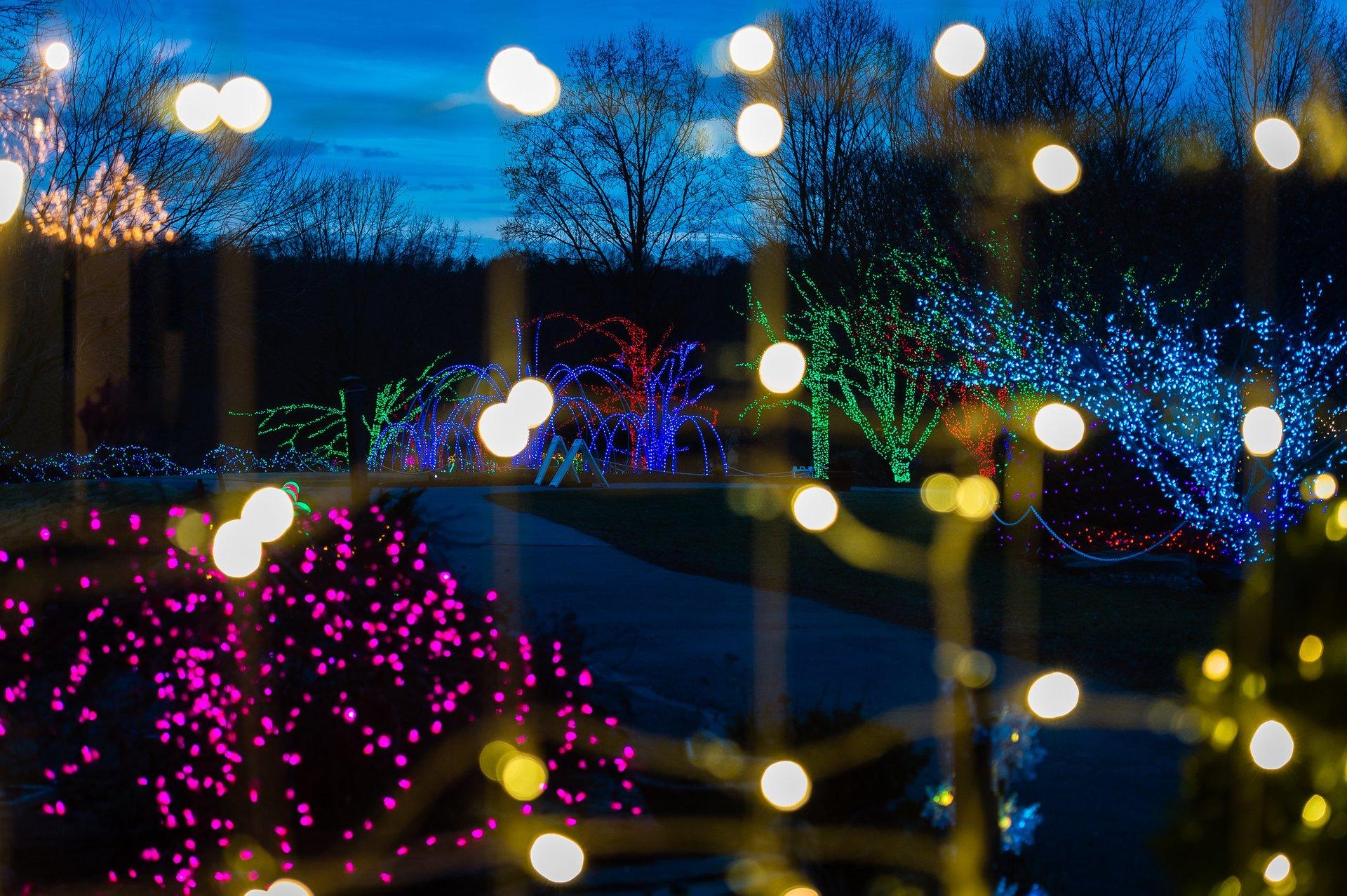 Meadowlark Botanical Gardens at the Holidays 2020