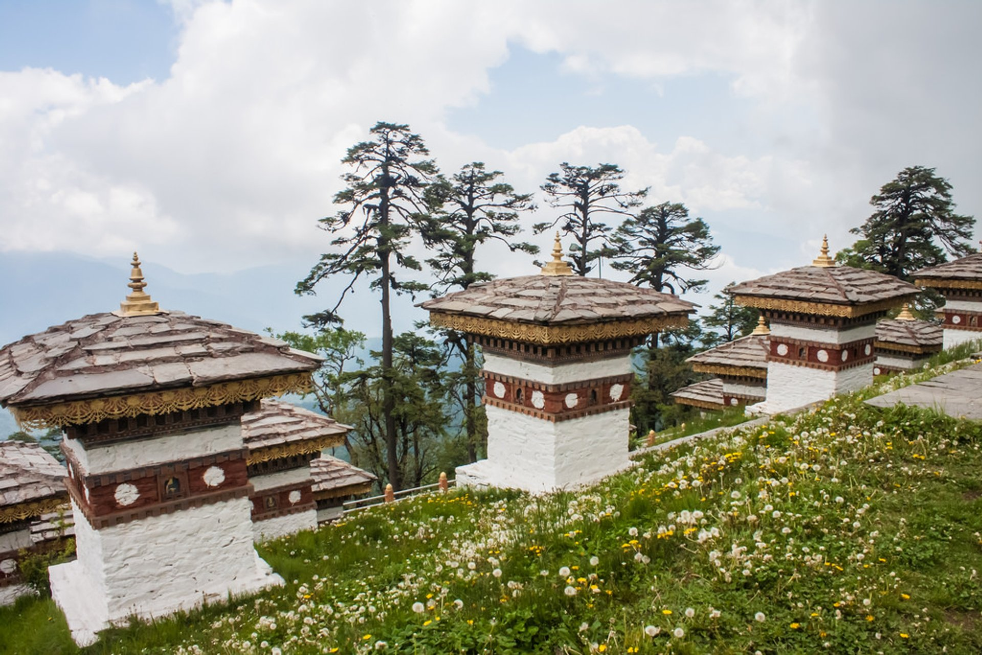 Spring in Bhutan 2020 - Best Time