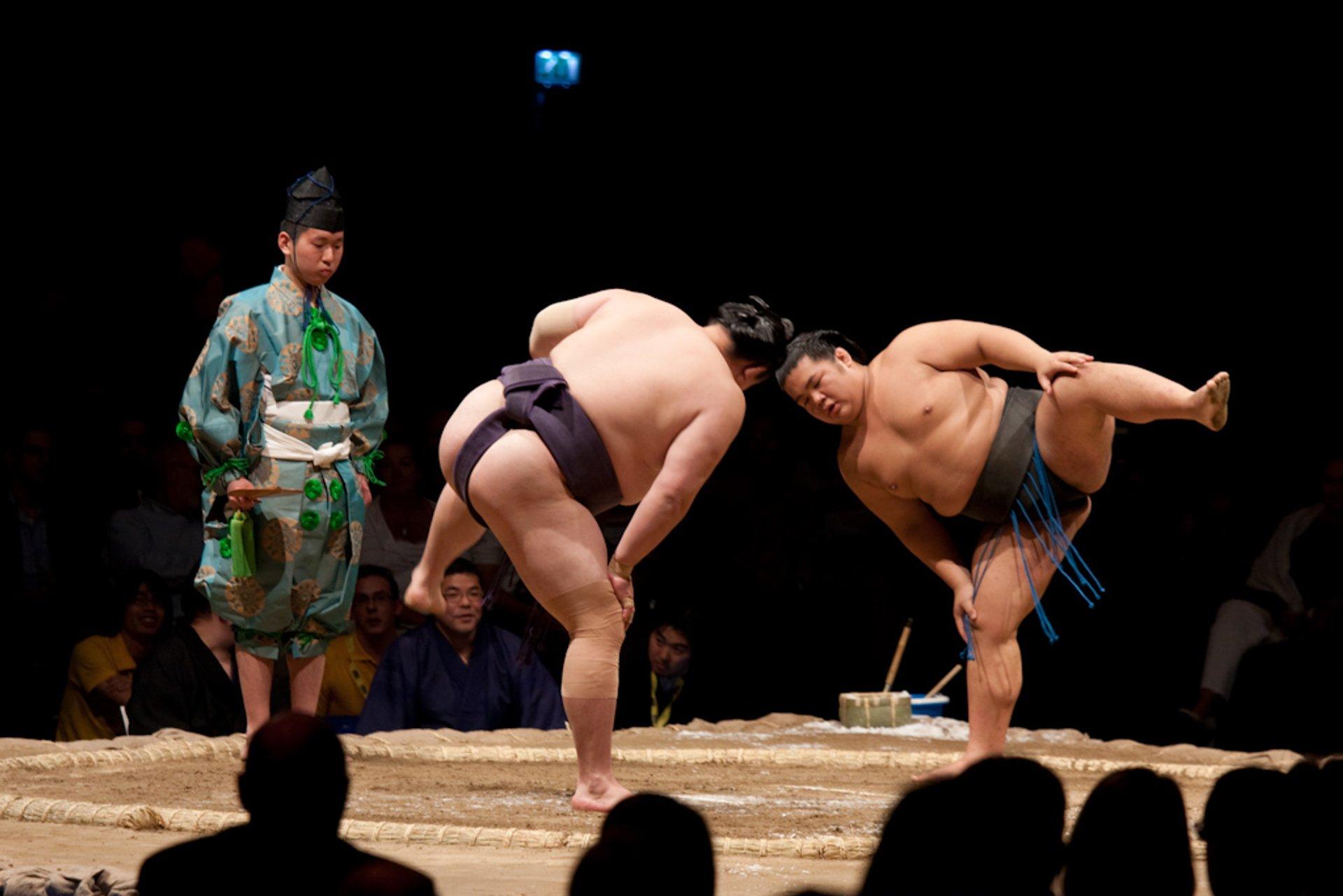 Sumo in Japan - Best Season