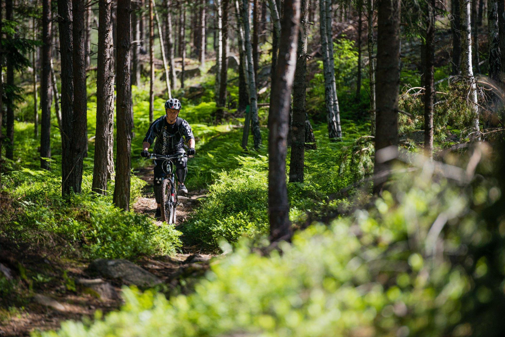 Biking in Sweden - Best Season 2020