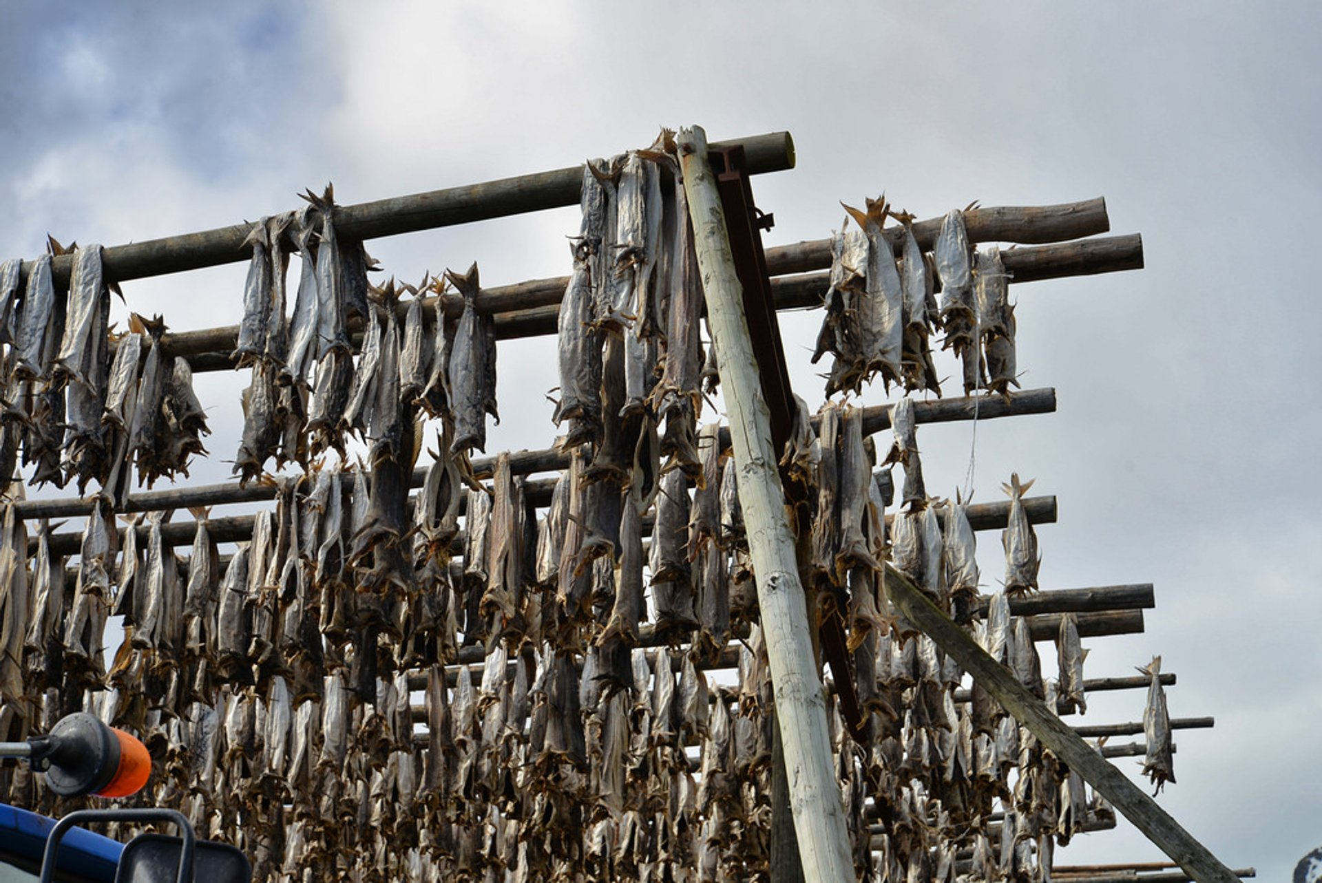 Best time for Dry Fish Rack in Norway 2020