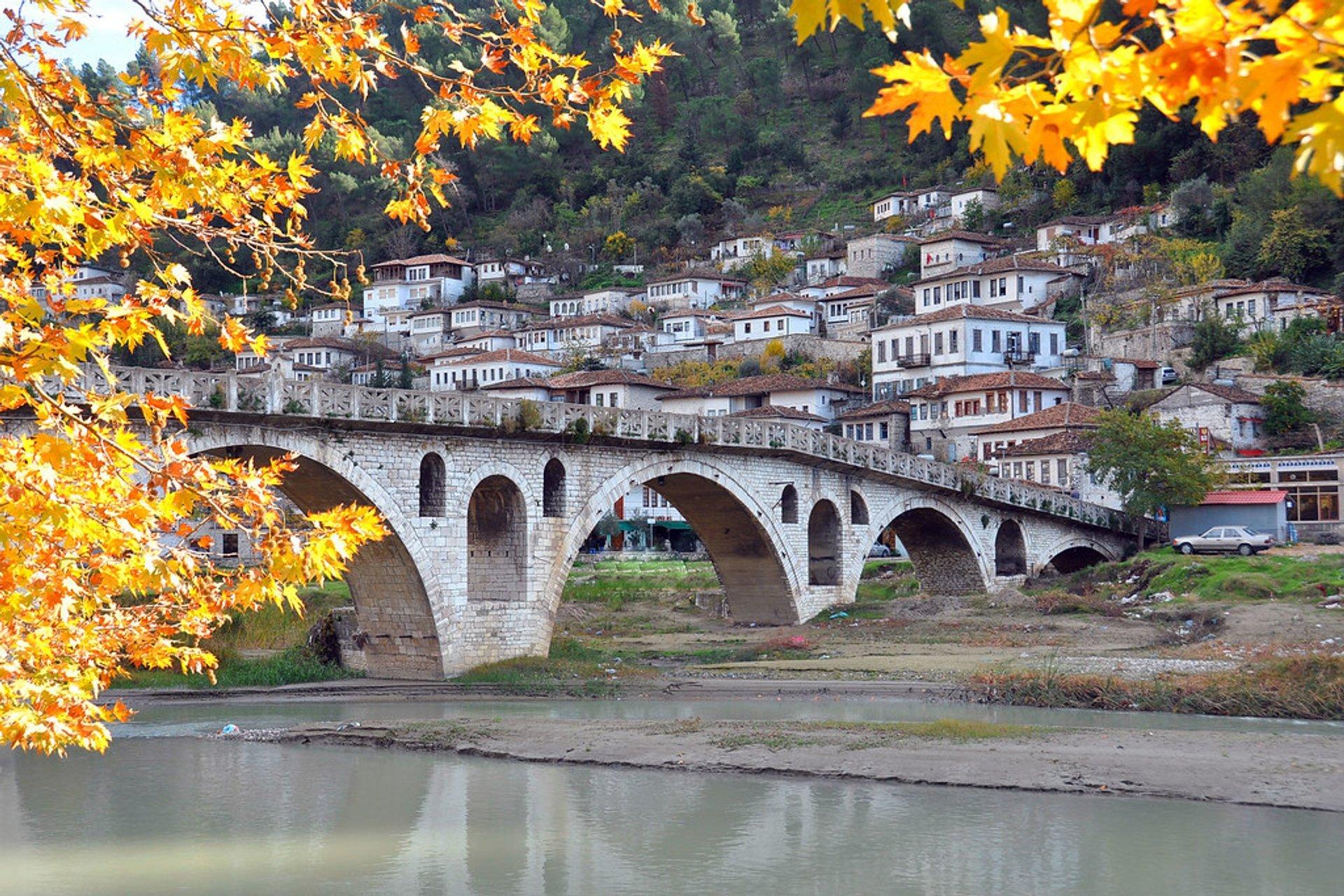 Gorica Bridge 2020